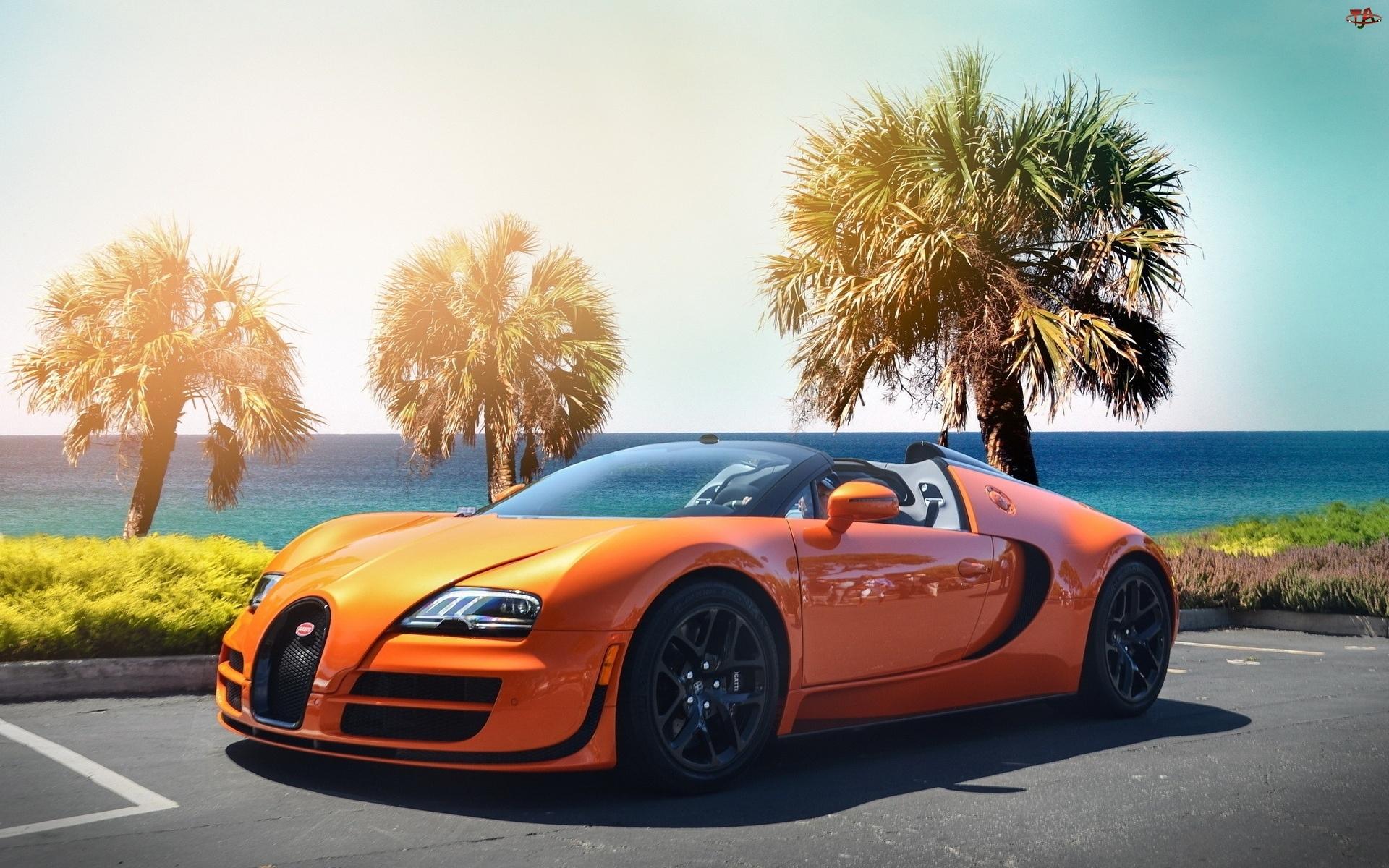 Bugatti, Palmy
