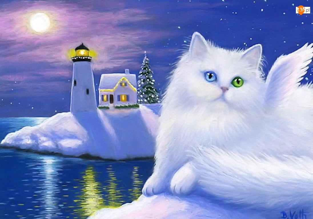 Oczy, Boże, Kot, Latarnia, Biały, Morska, Kolorowe, Narodzenie