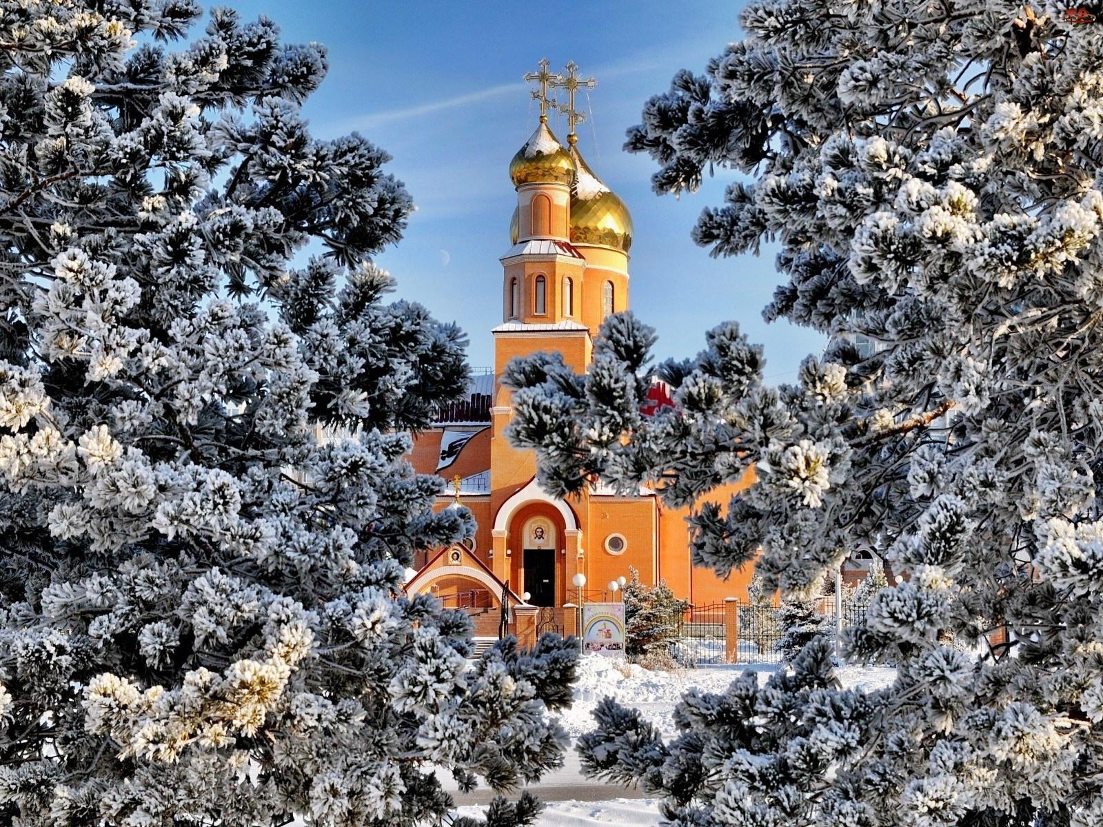 Cerkiew, Sosny, Zima, Ośnieżone