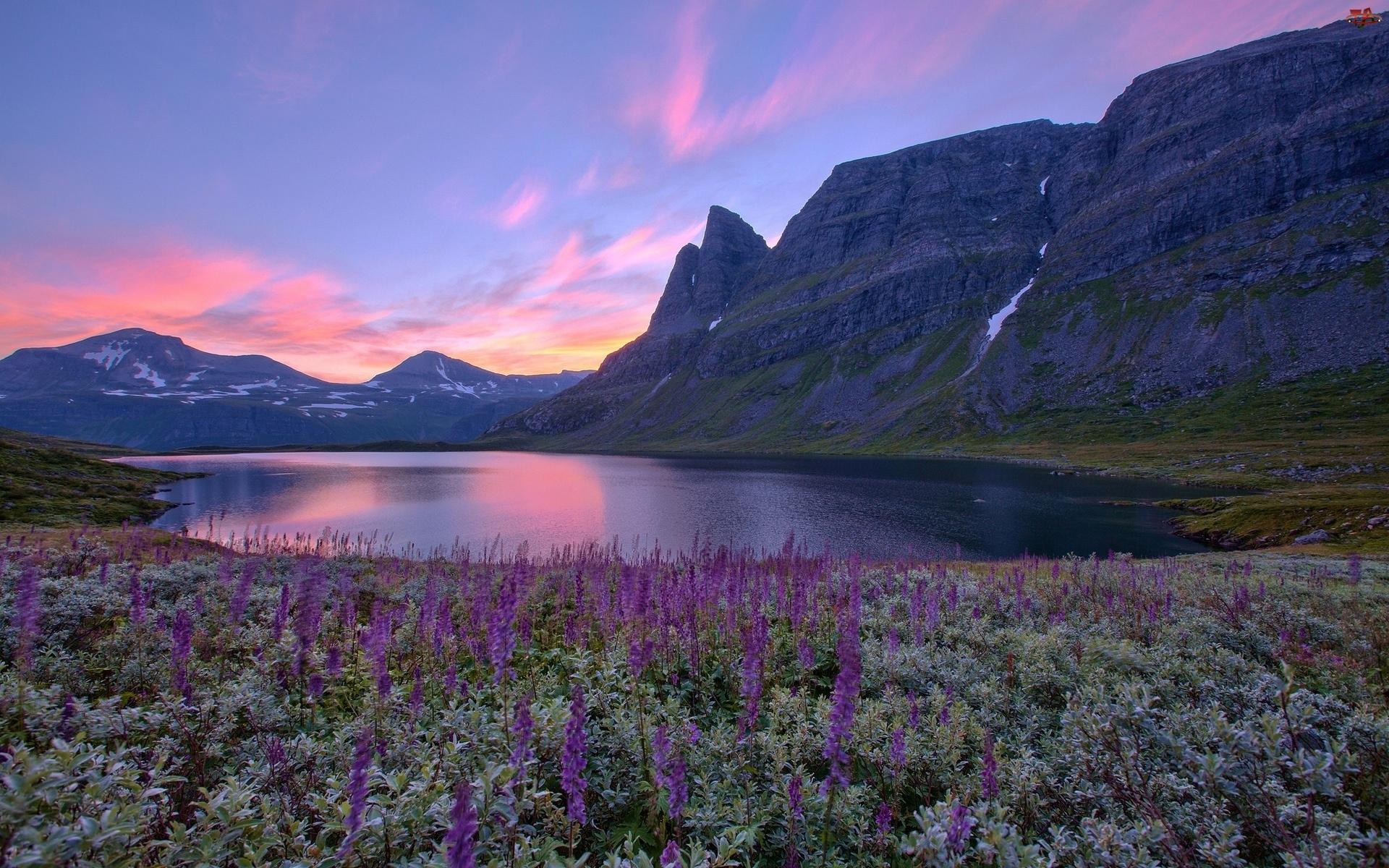 Łąka, Norwegia, Jezioro, Góry