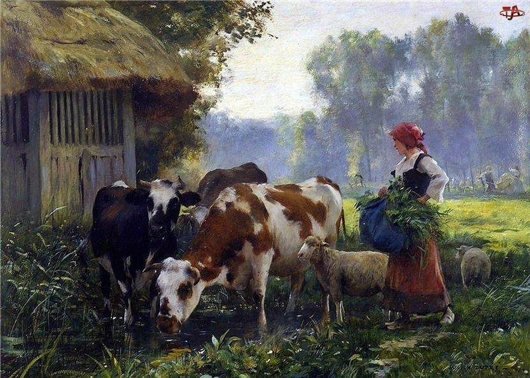 Krowy, Łąka, Owce, Las