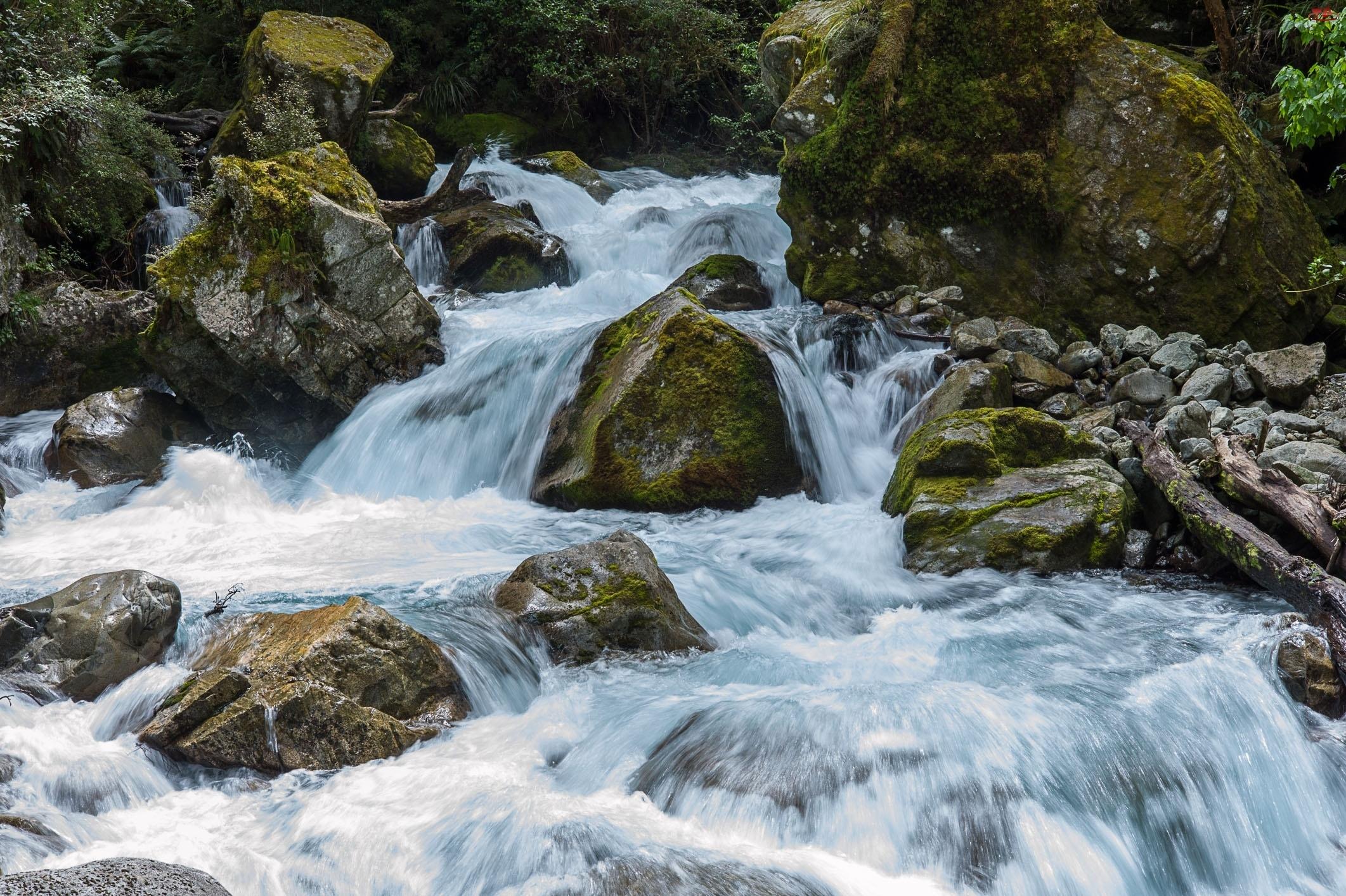 Kamienie, Rwąca, Rzeka