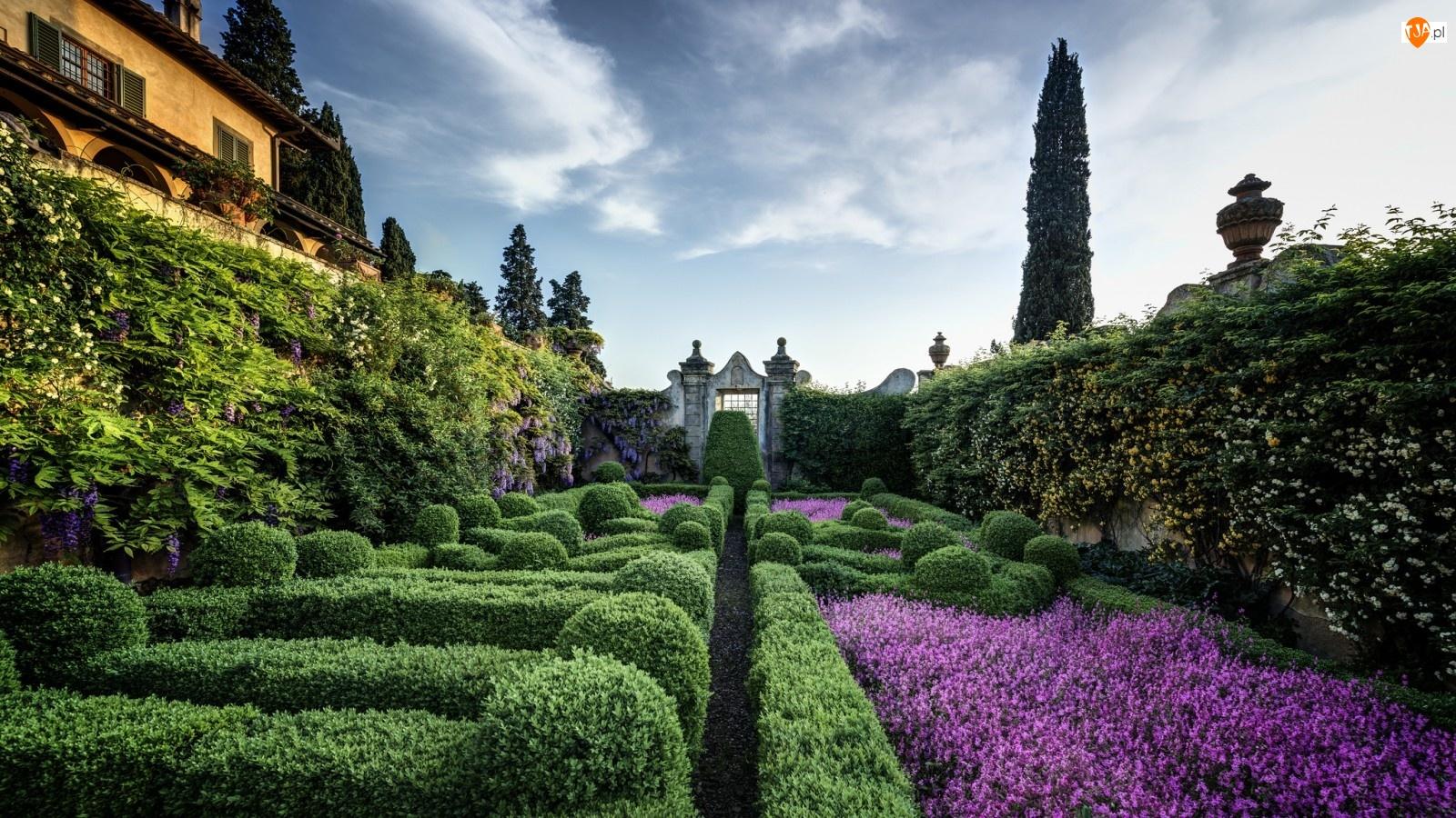 Willa, Ogród, Zieleń