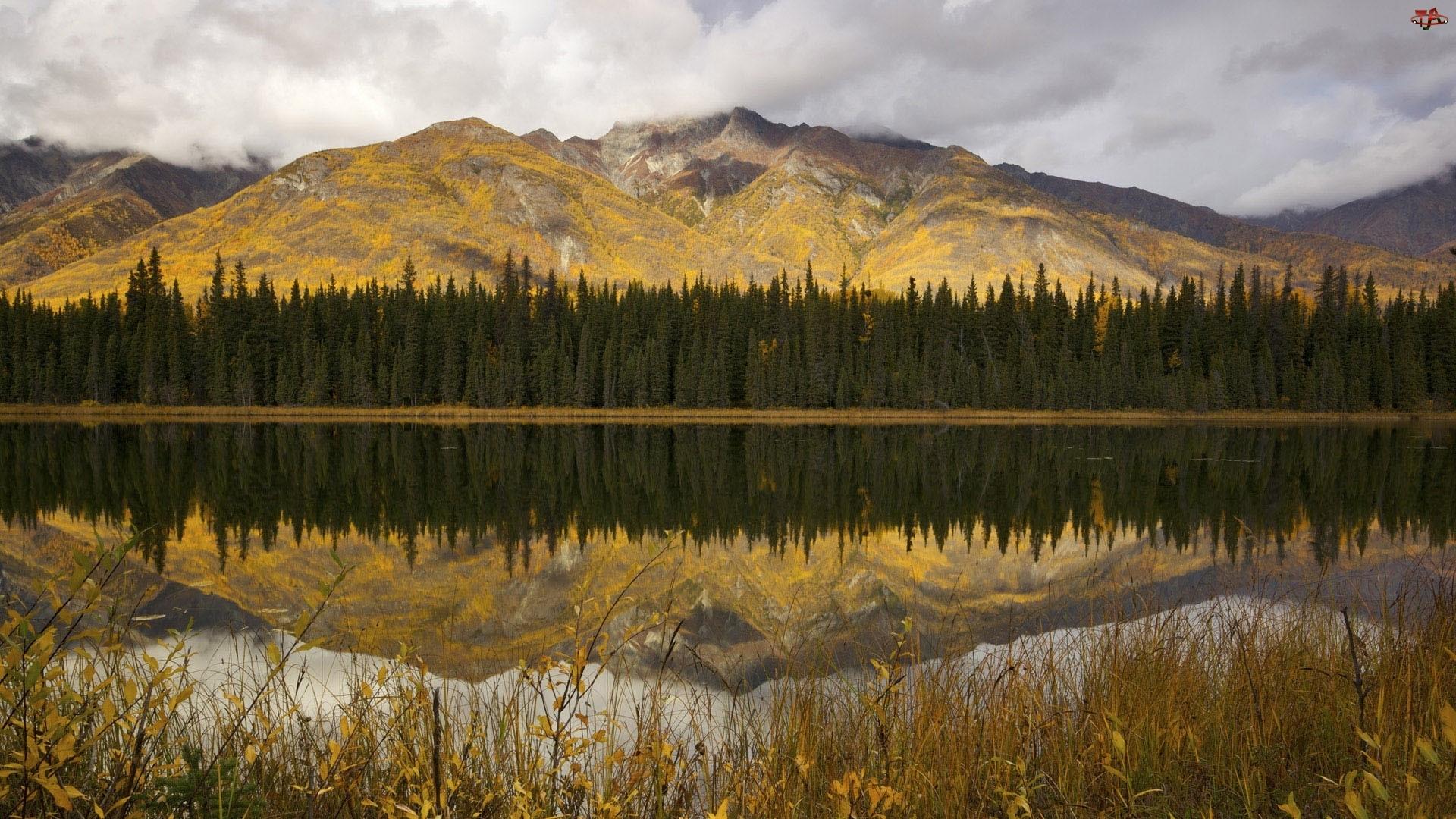Góry, Odbicie, Las, Jezioro