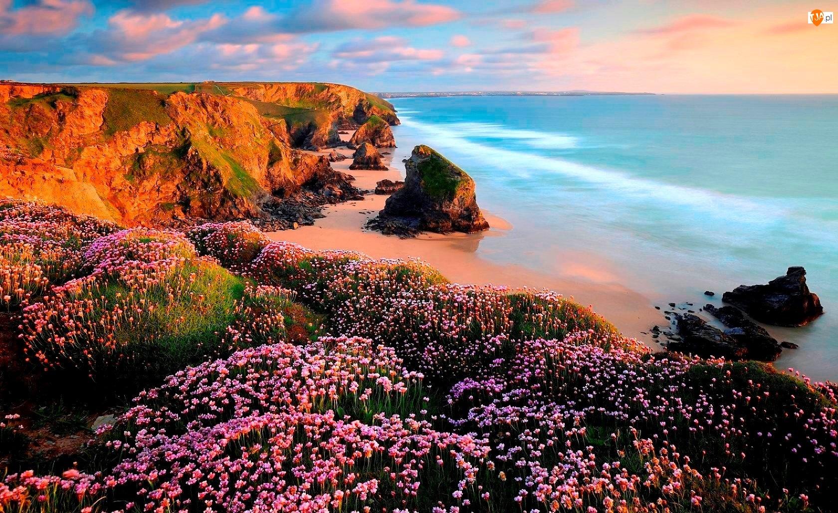 Skały, Chmury, Kwiaty, Morze