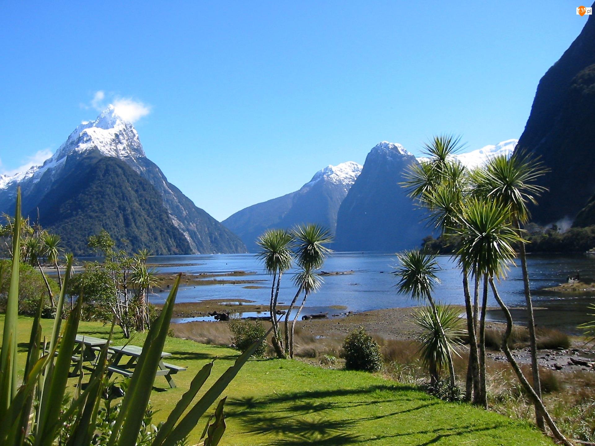 Nowa Zelandia, Jezioro, Roślinność, Góry, Milford Sound