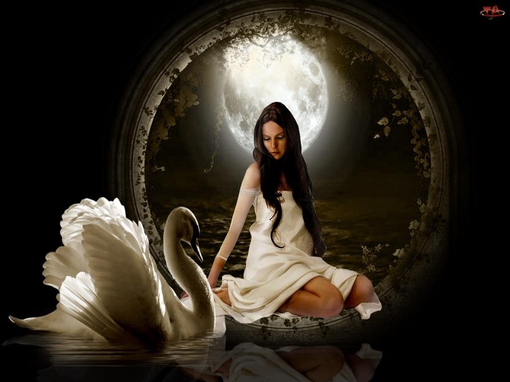 Księżyc, Kobieta, Łabędź