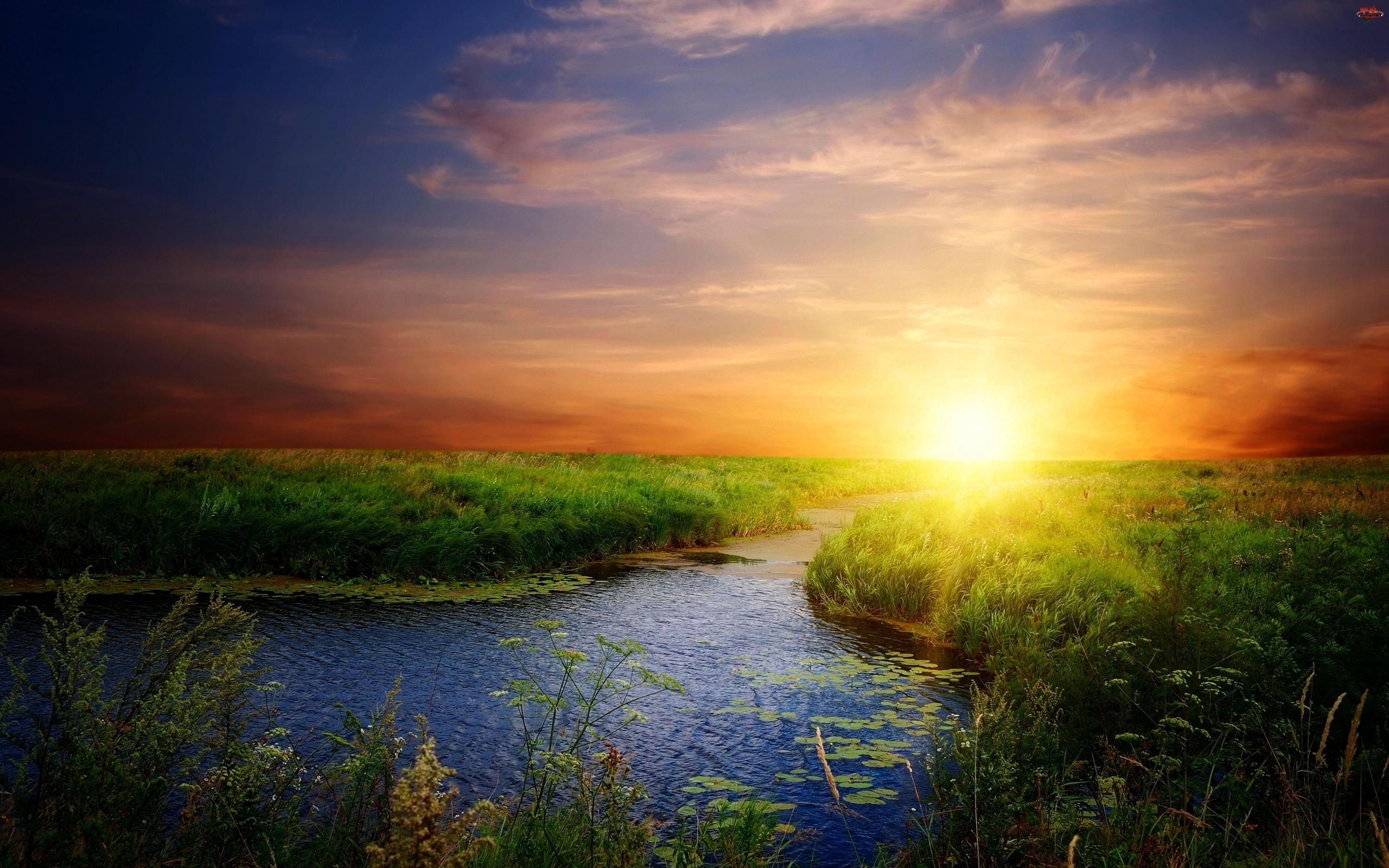 Zachód, Trawa, Słońca, Rzeka