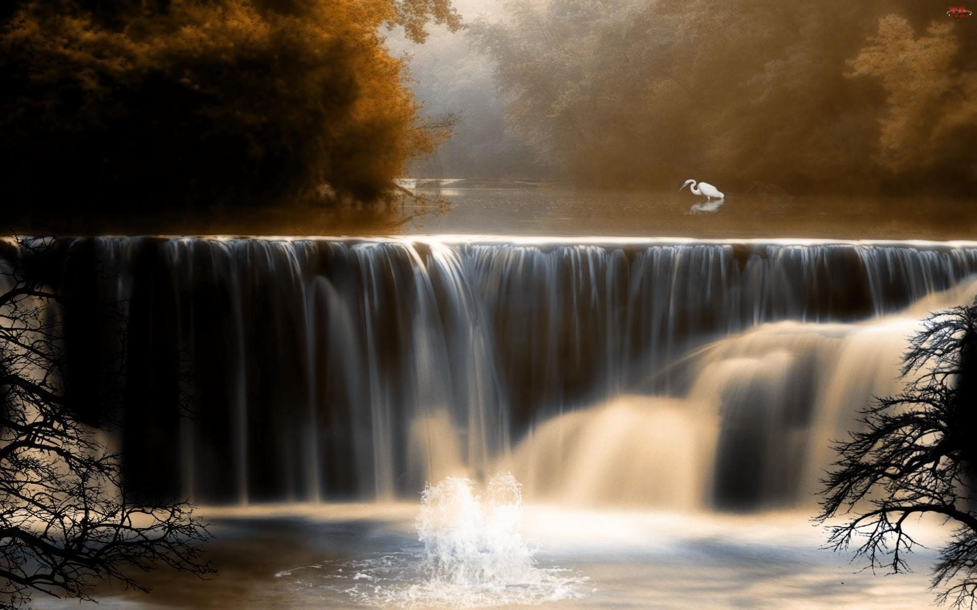 Jesień, Wodospad, Las