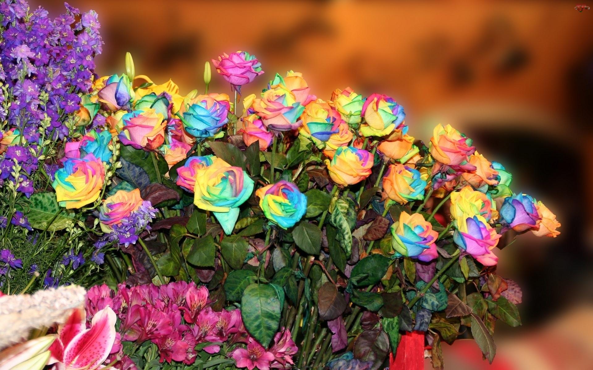 Kwiaty, Róż, Bukiet, Kolorowych