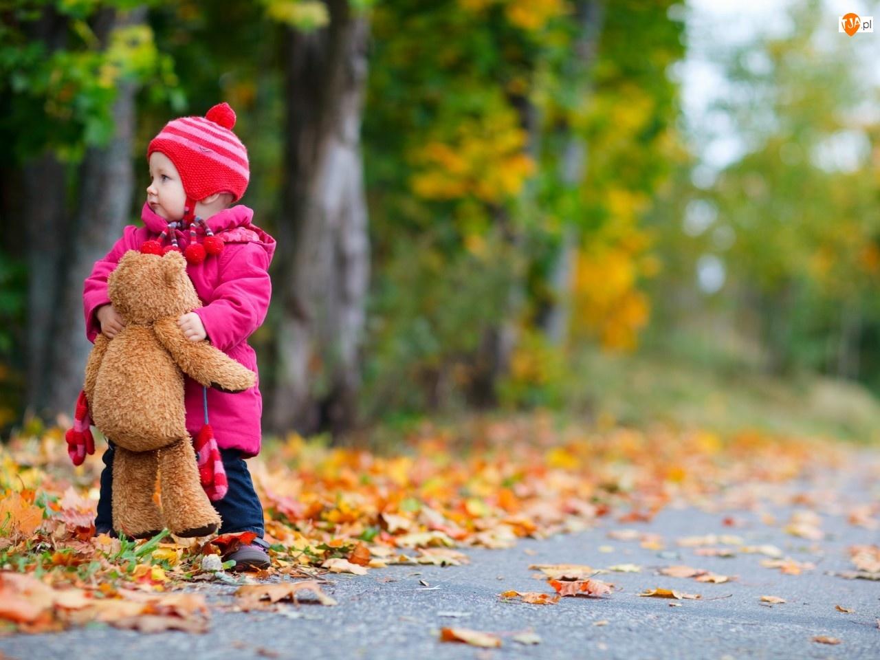 Liście, Dziecko, Jesień, Misio, Drzewa, Alejka