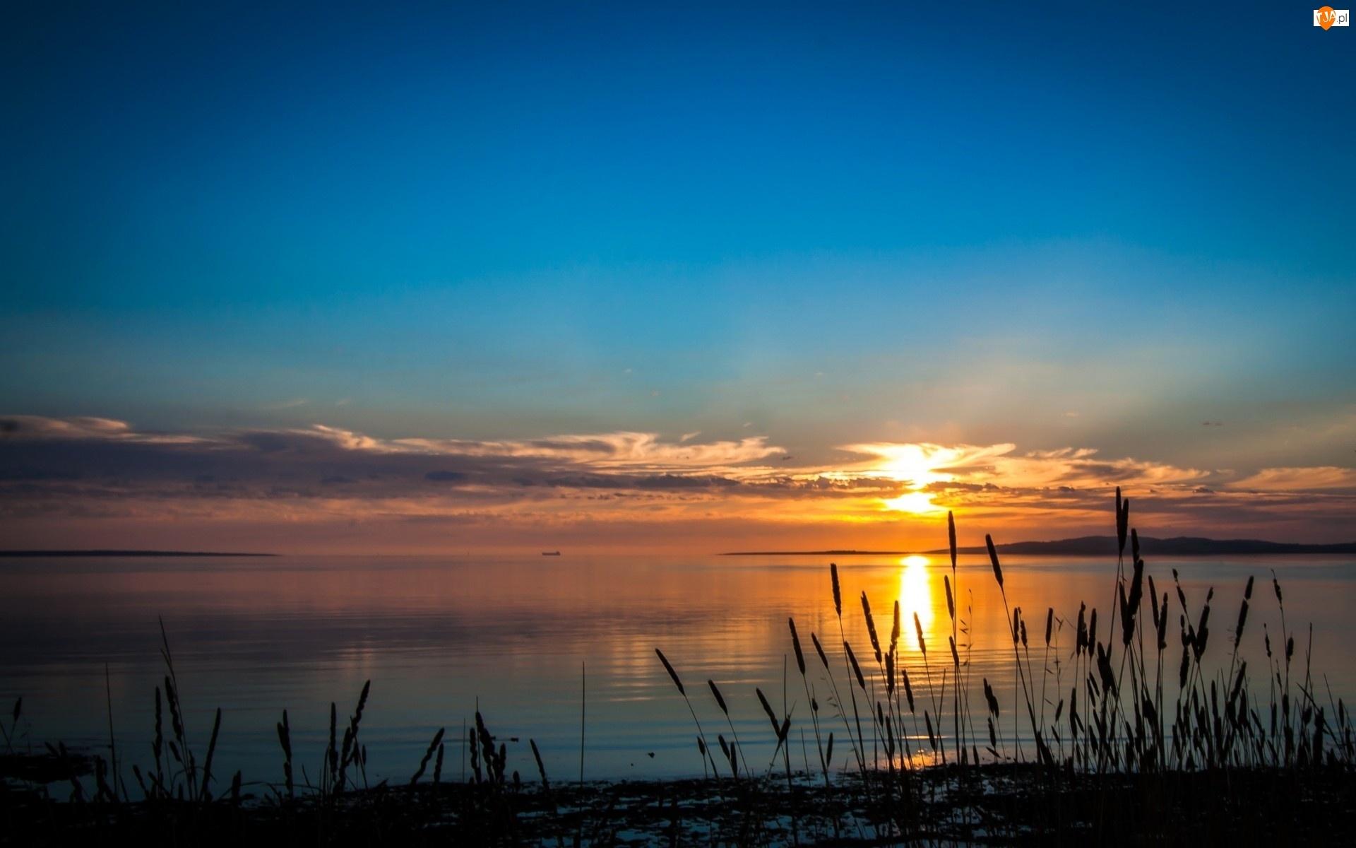 Zachód, Tatarak, Słońca, Jezioro