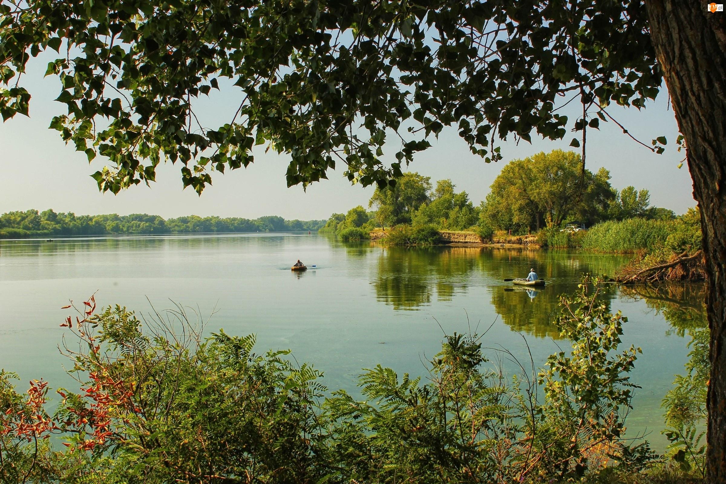 Rzeka, Lato, Wędkarze, Lasy