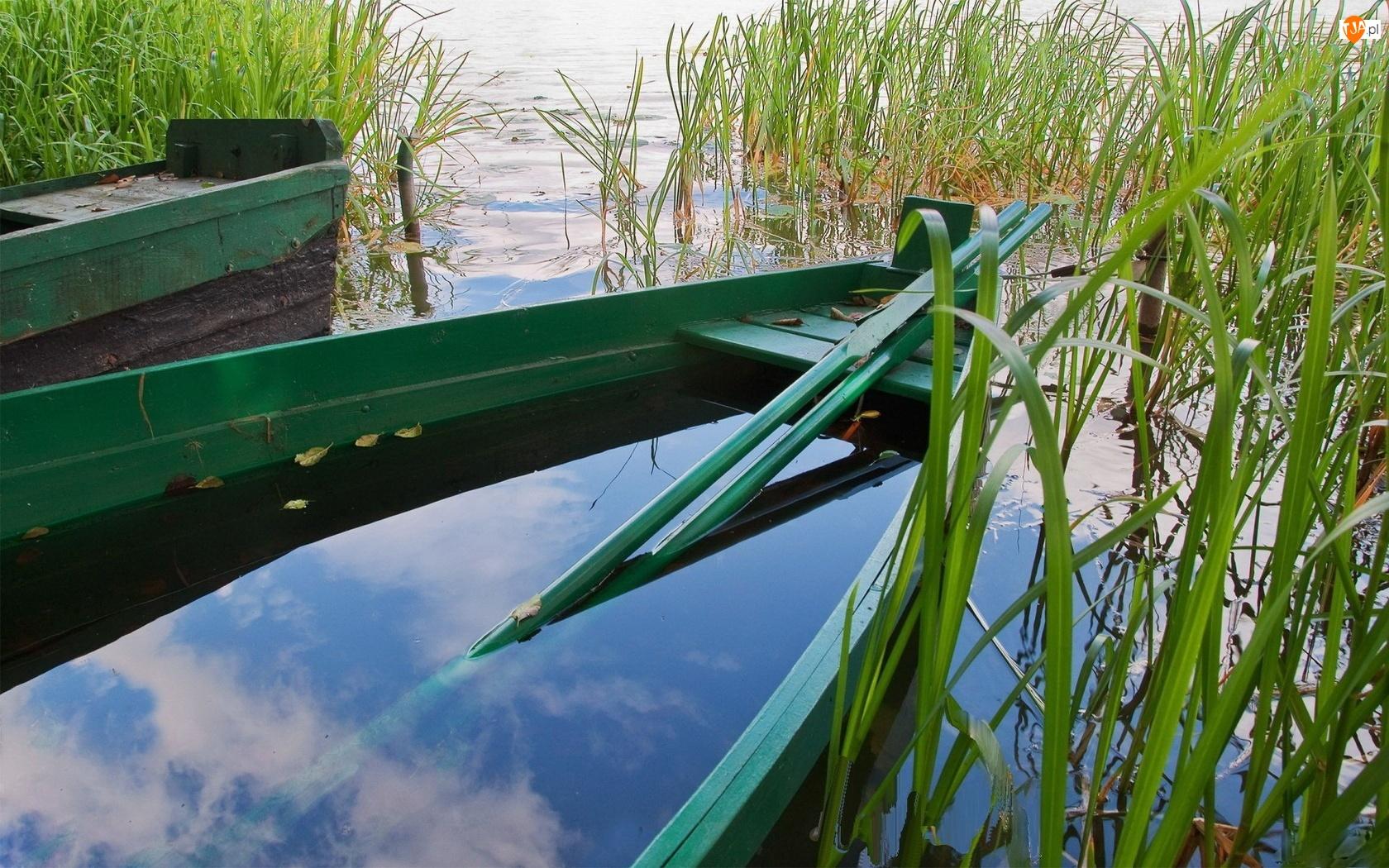 Jezioro, Tatarak, Łódka, Wiosła