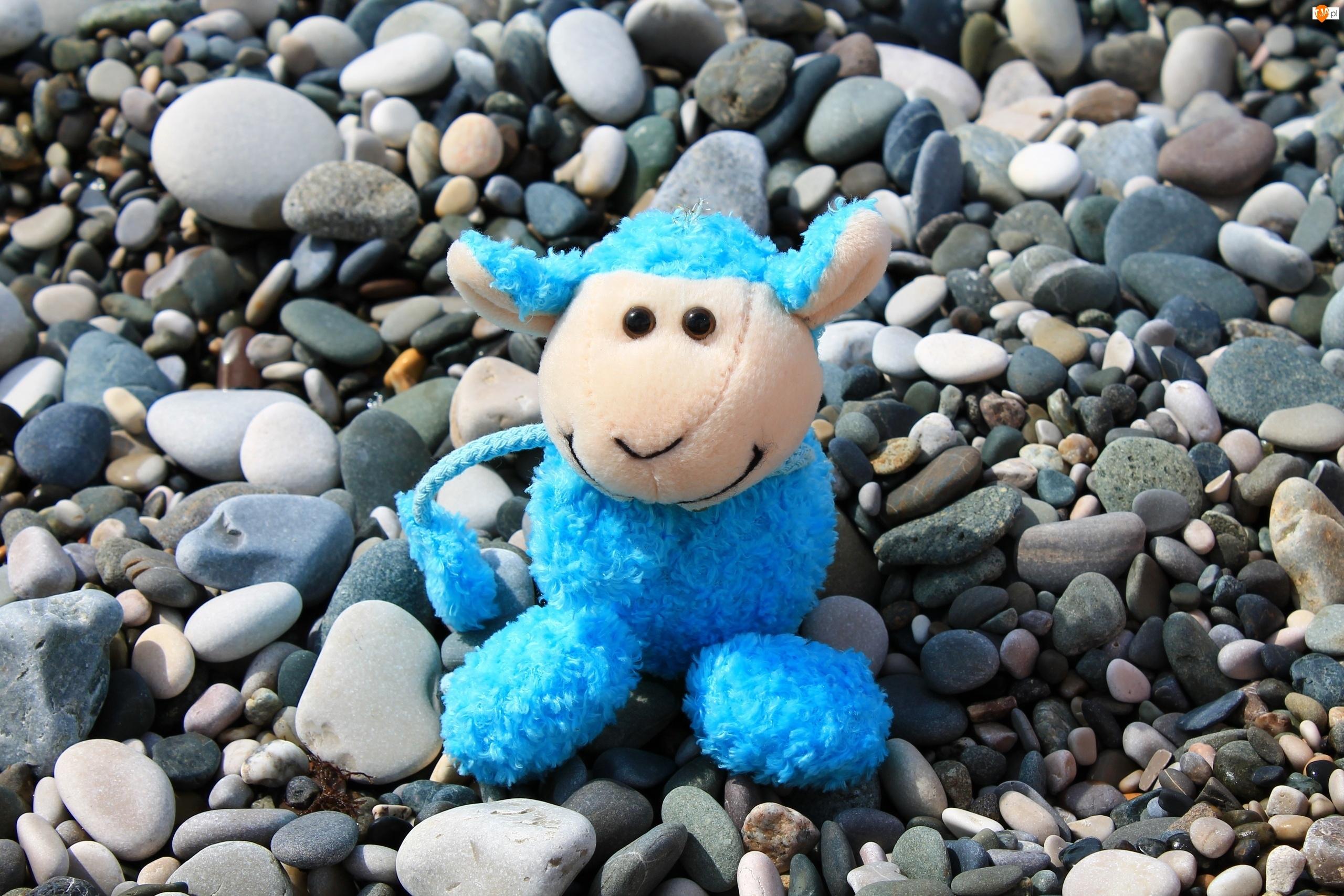 Zabawka, Kamienie, Niebieska