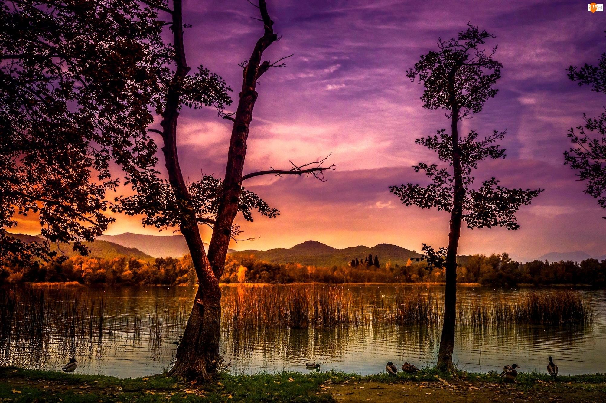 Odbicie, Jezioro, Drzewa, Zmierzch, Góry