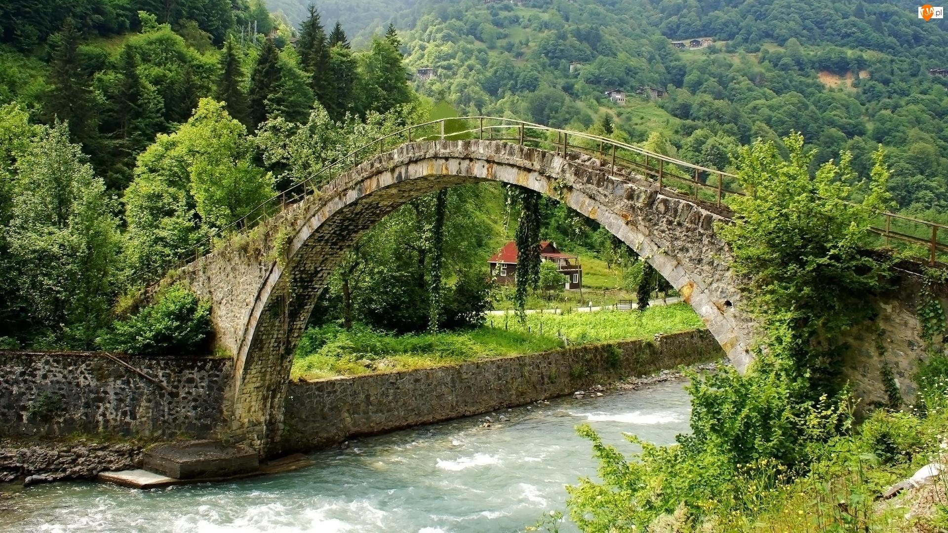 Most, Zalesione, Rzeka, Wzgórza, Kamienny