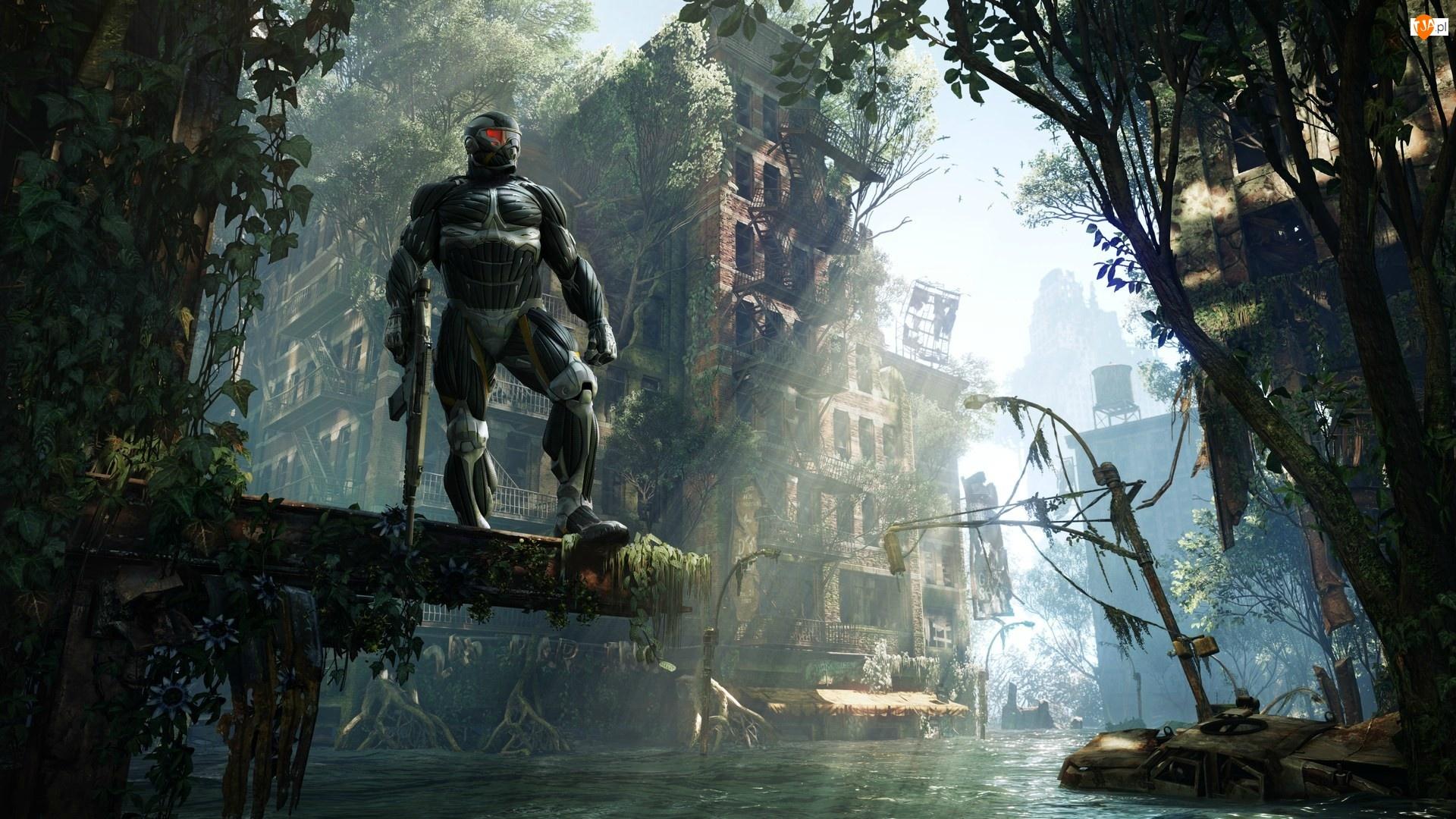 Drzewa, Crysis 3, Postać, Uzbrojona, Woda