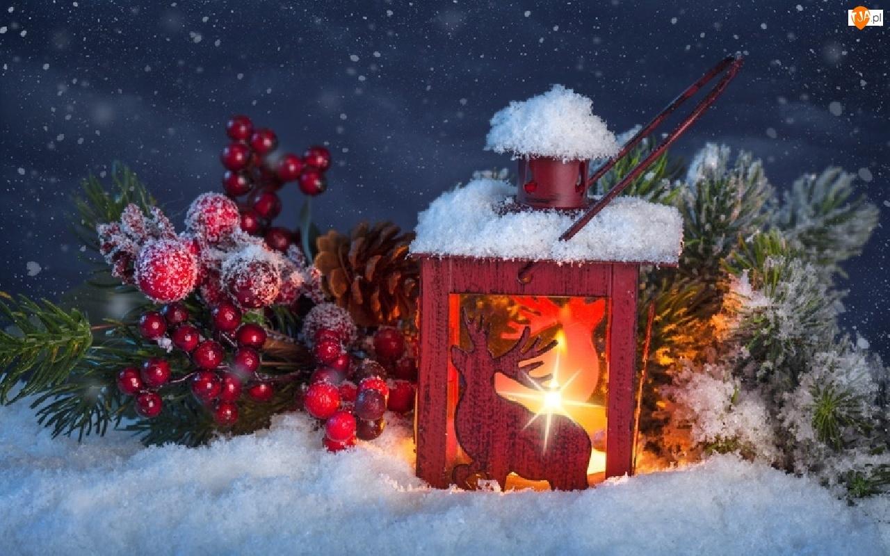 Śnieg, Lampion, Ozdoby, Kompozycja, Gałązki, Boże Narodzenie