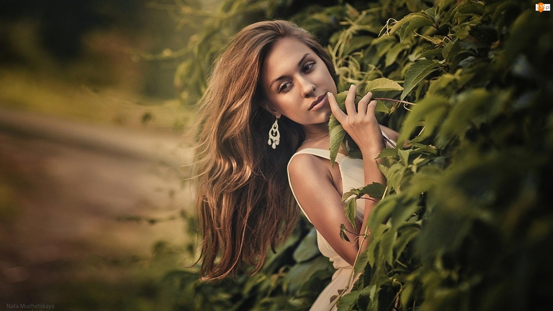 Romantyczna, Krzewy, Kobieta, Park