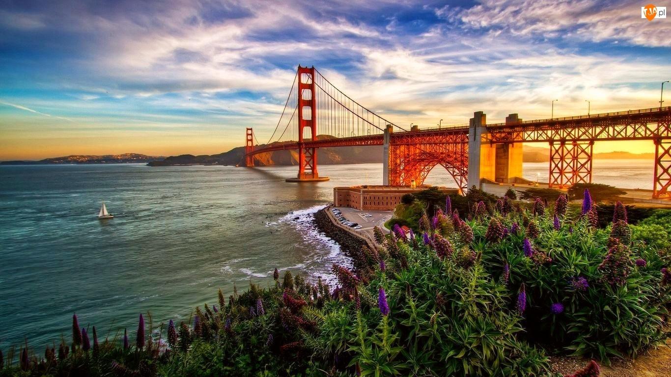 Rzeka, Łubiny, Most Golden Gate, Zachód Słońca
