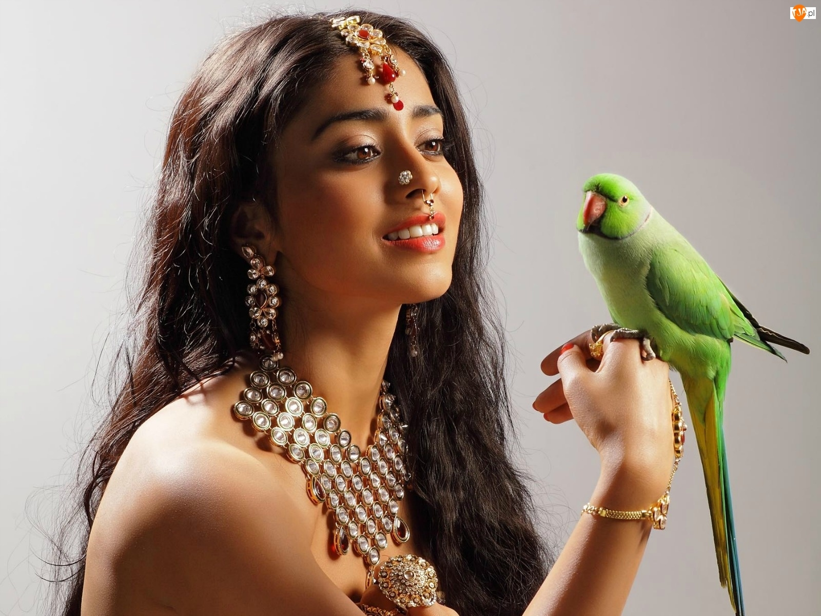 Biżuteria, Zielona, Piękna, Papuga, Hinduska, Makijaż
