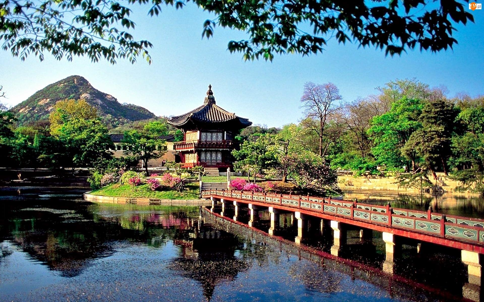 Jezioro, Jong, Changwon, Miasto, Most, Pawilon, Park