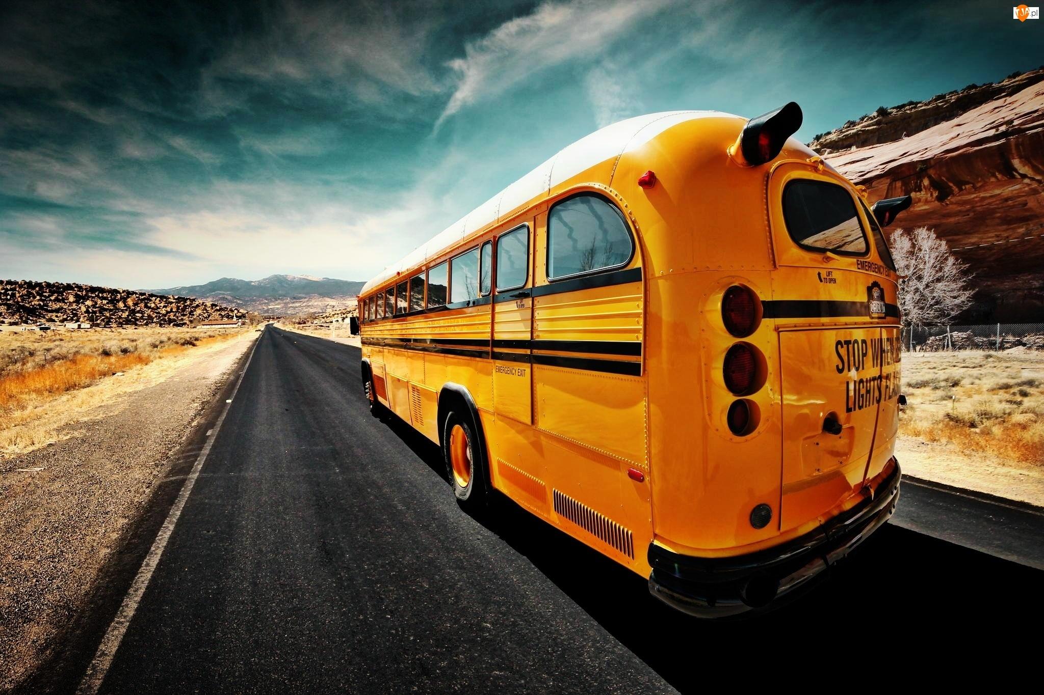 Szosa, Żółty, Autobus