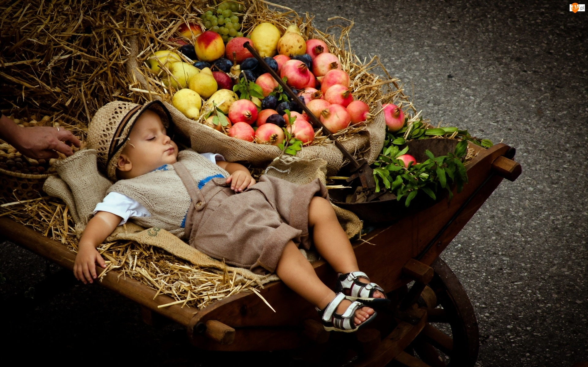 Śpiące, Taczka, Dziecko, Owoce