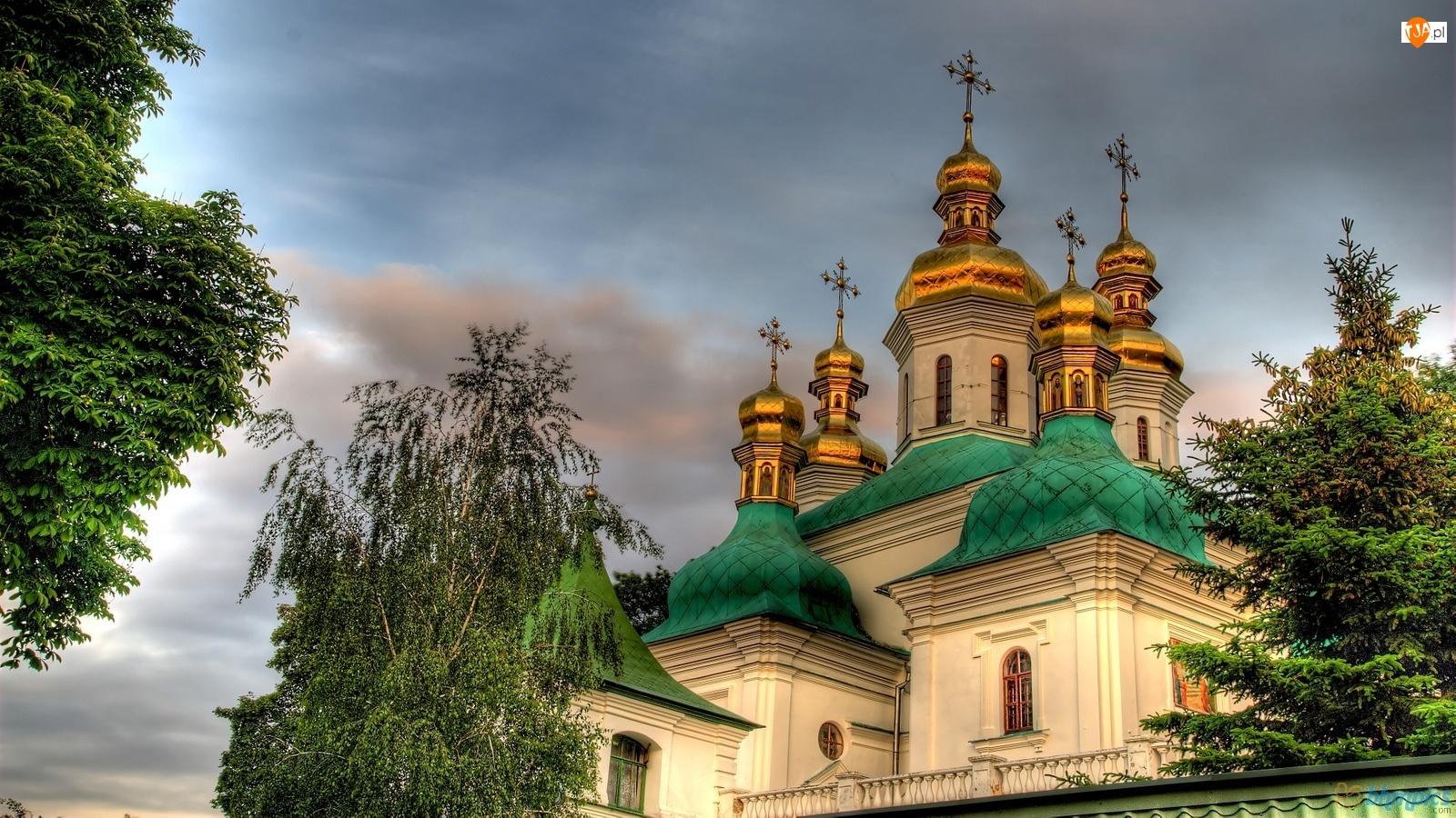 Drzewa Cerkiew, Kijów, Cerkiew
