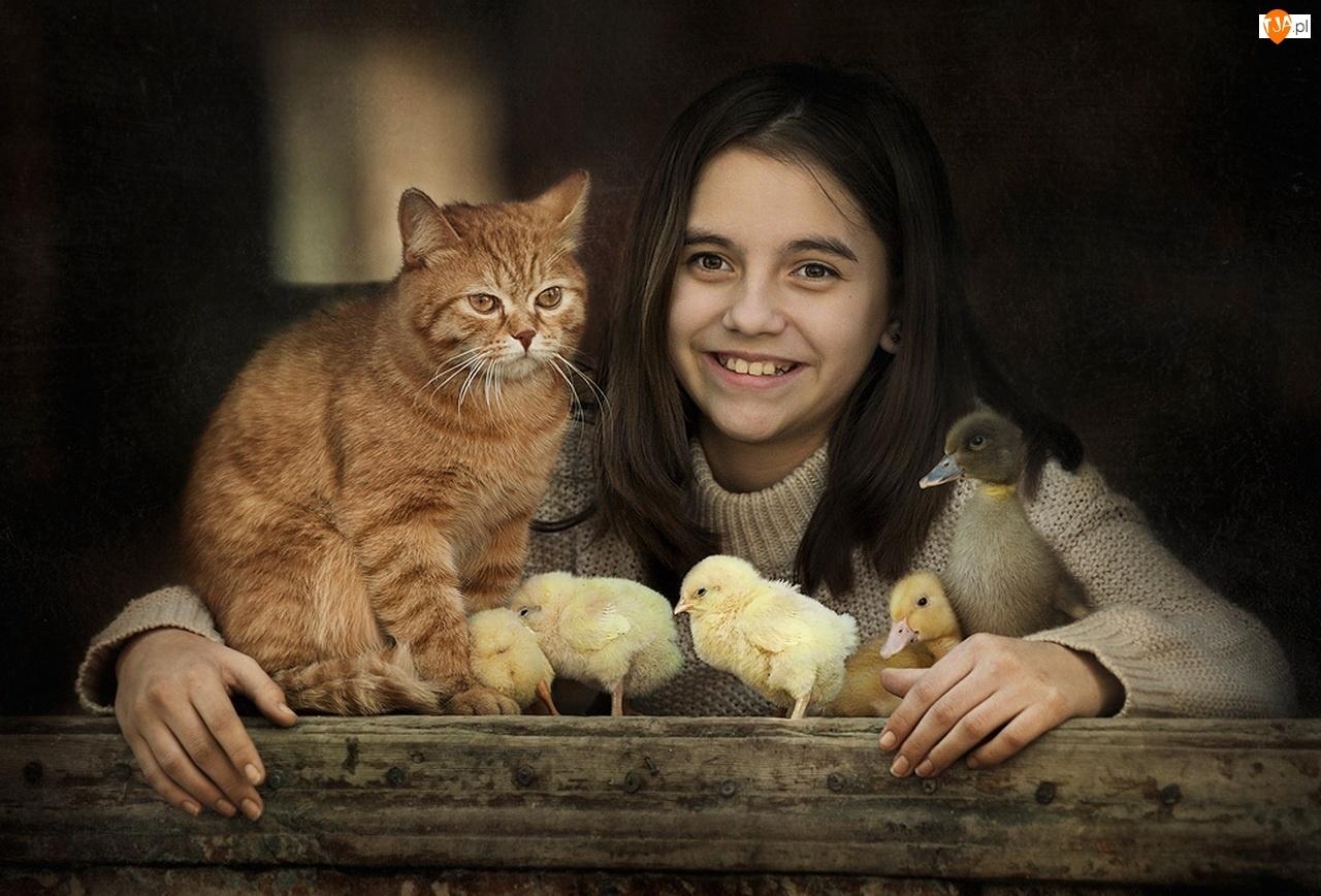 Kaczuszka, Dziewczyna, Kot, Rudy, Kurczaki