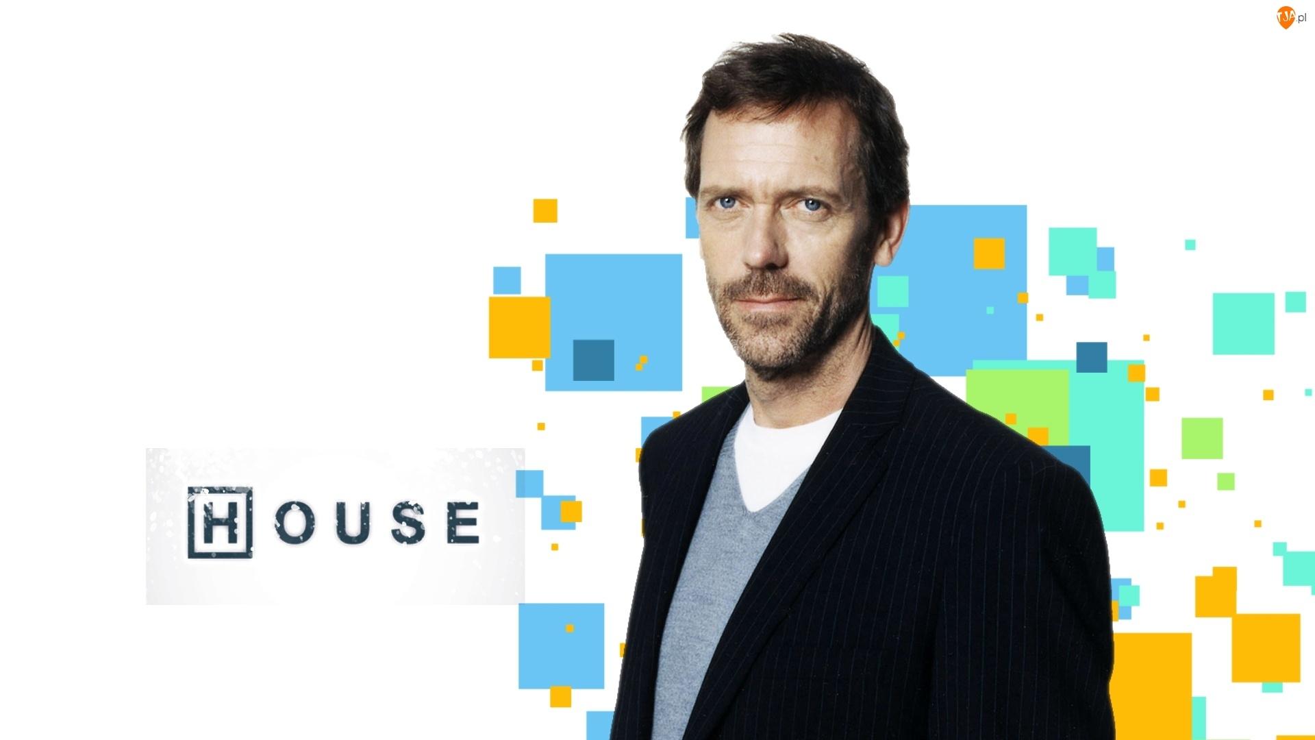 House, Hugh Laurie, Serial, Aktor