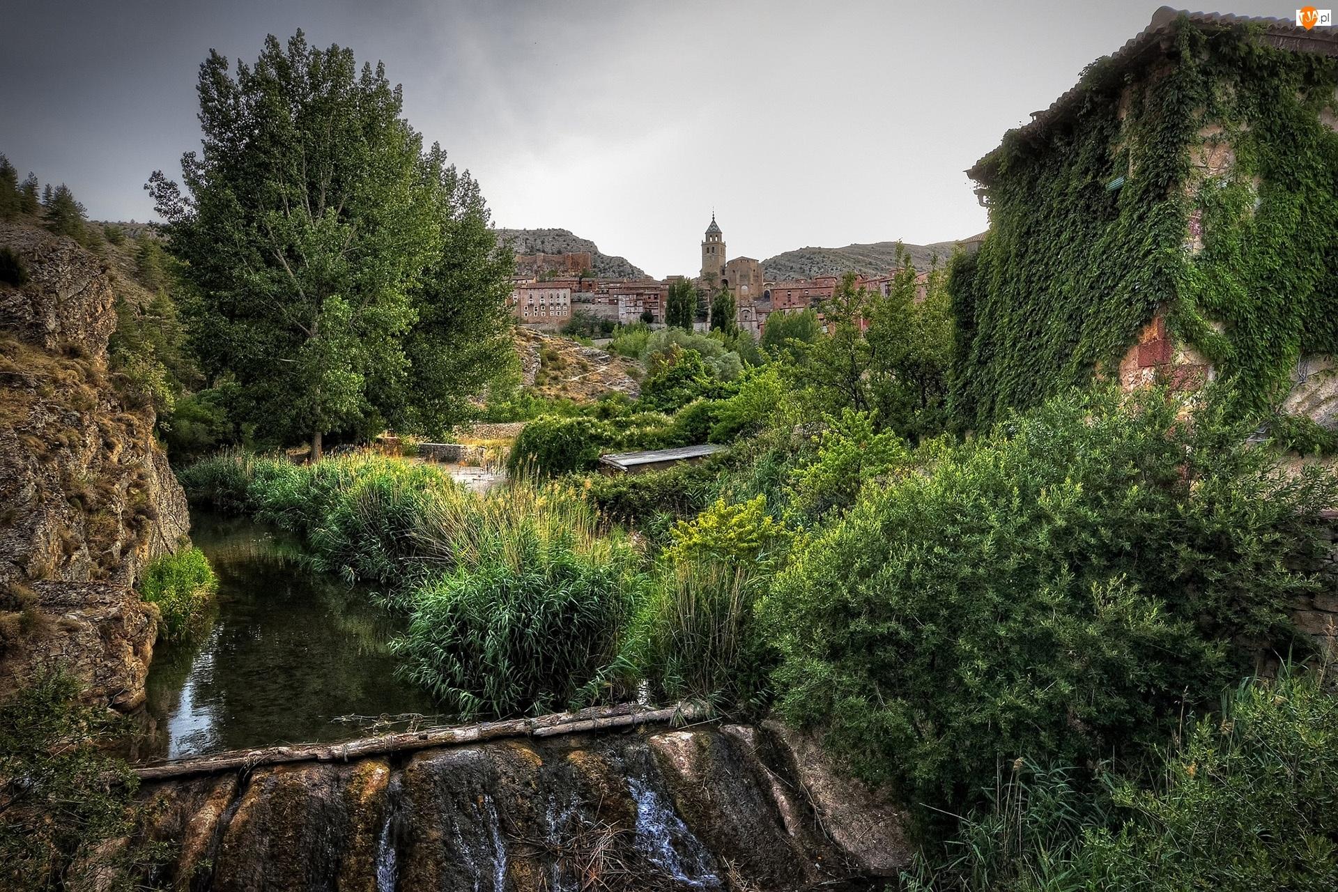 Ogród, Miasto, Potok