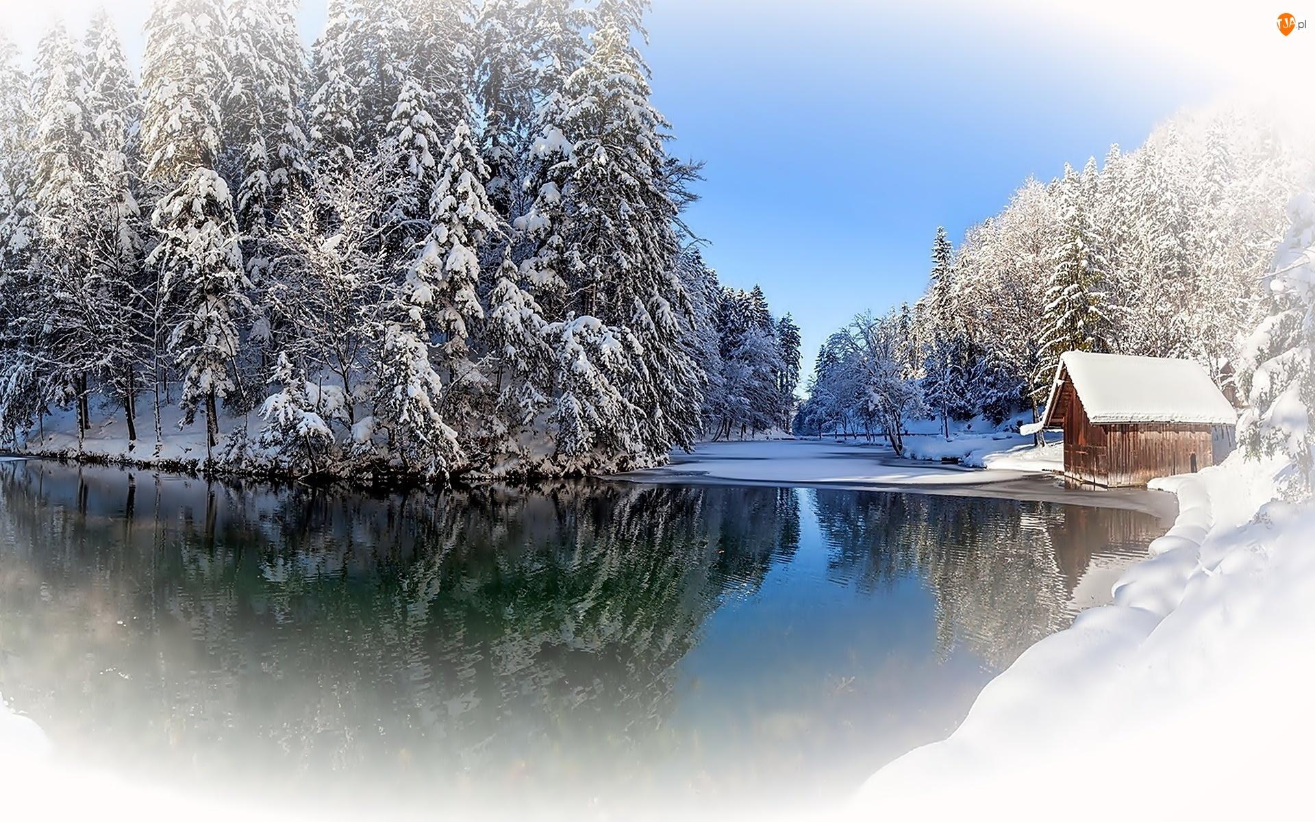 Drzewa, Zima, Jezioro, Śnieg, Domek