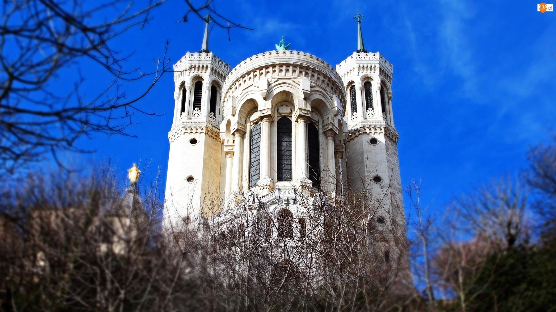 Katedra, Francja, Notre Dame, Paryż
