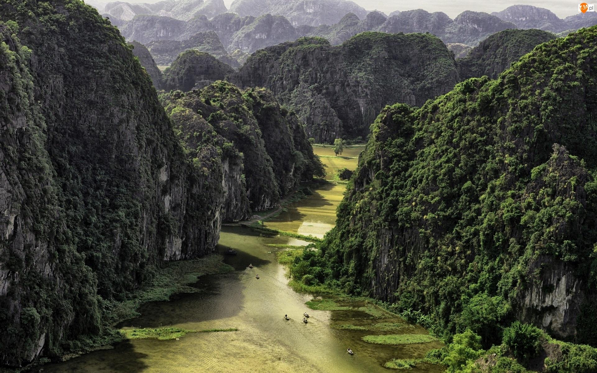 Góry, Wietnam, Lasy, Rzeka