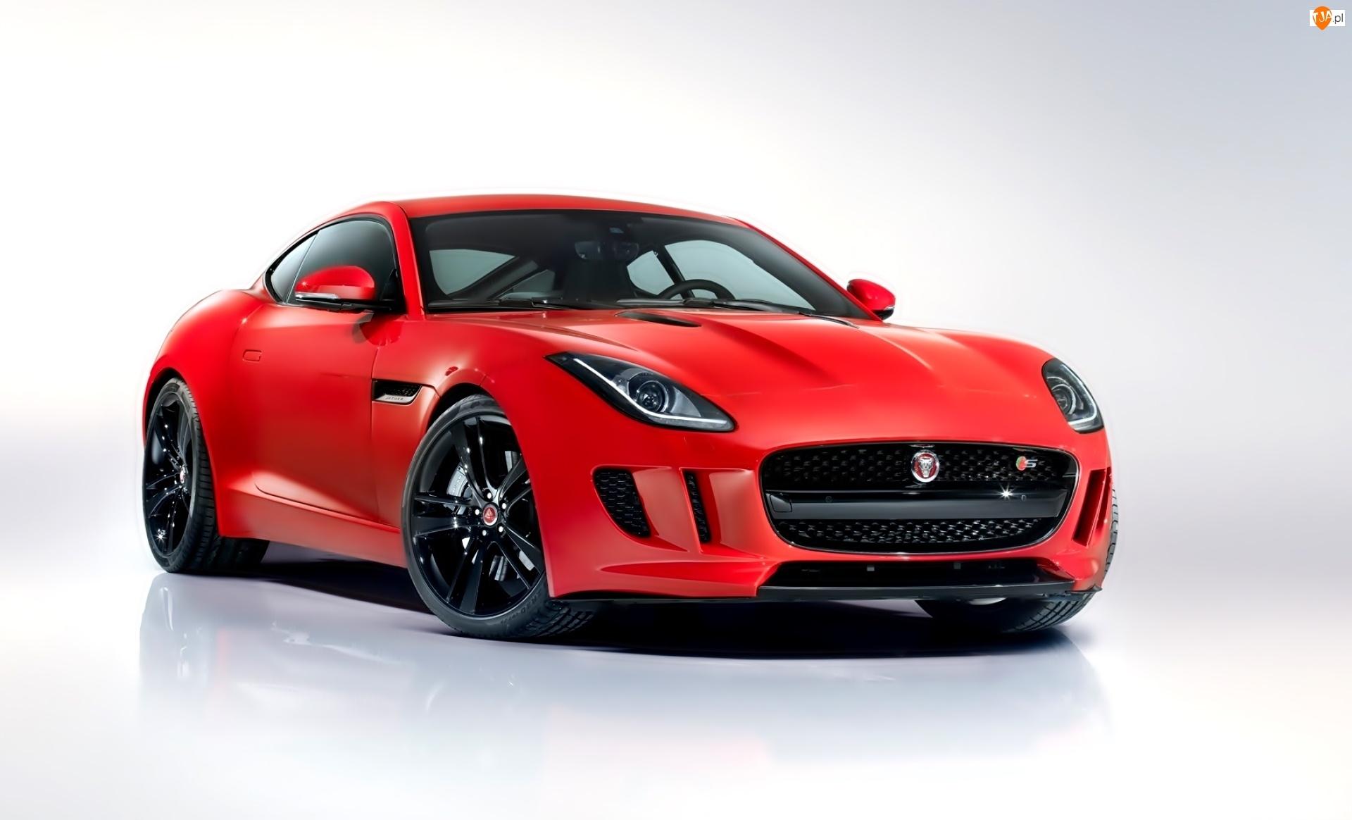 Jaguar, F