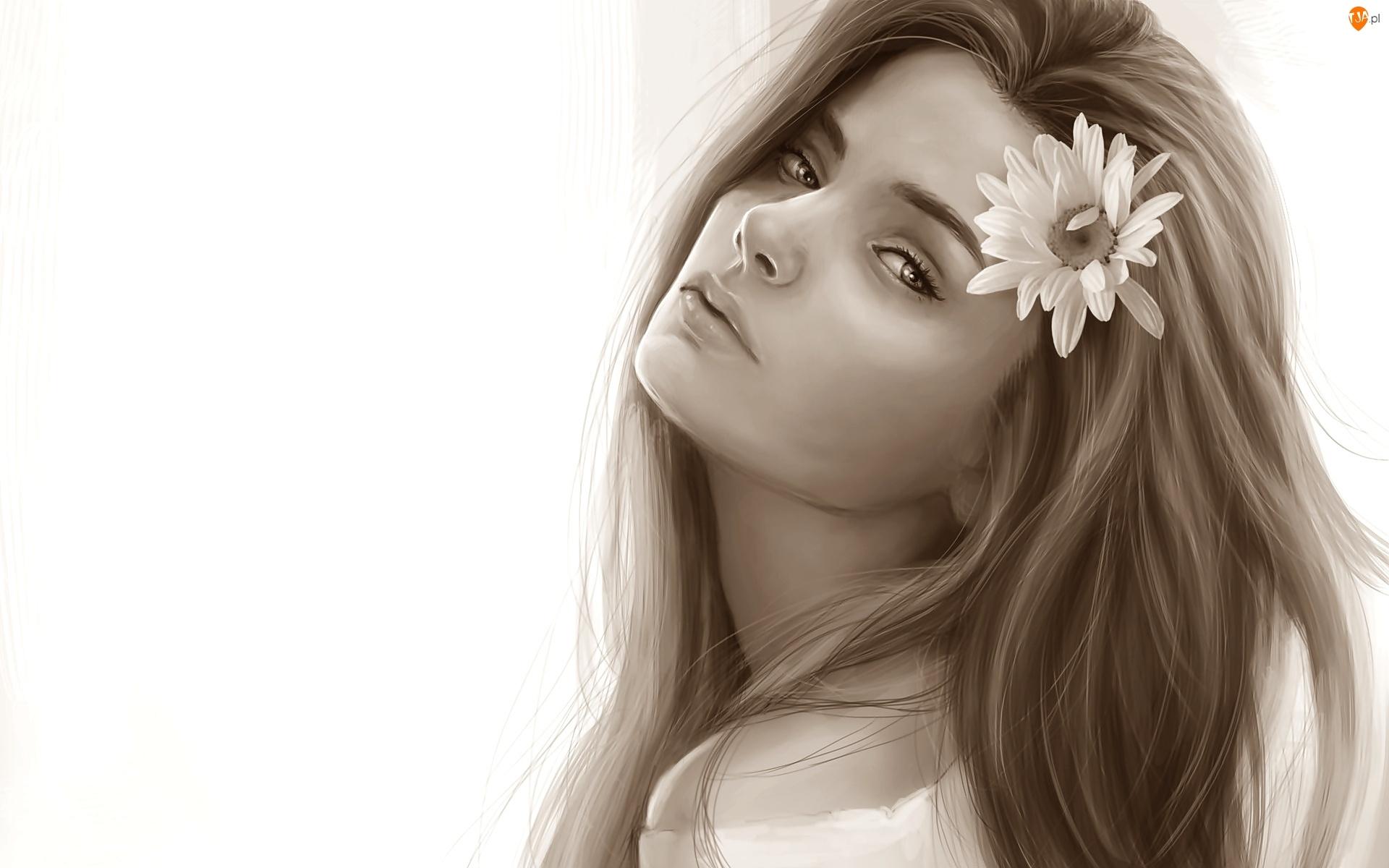 Kwiat, Grafika, Kobieta, Sepia