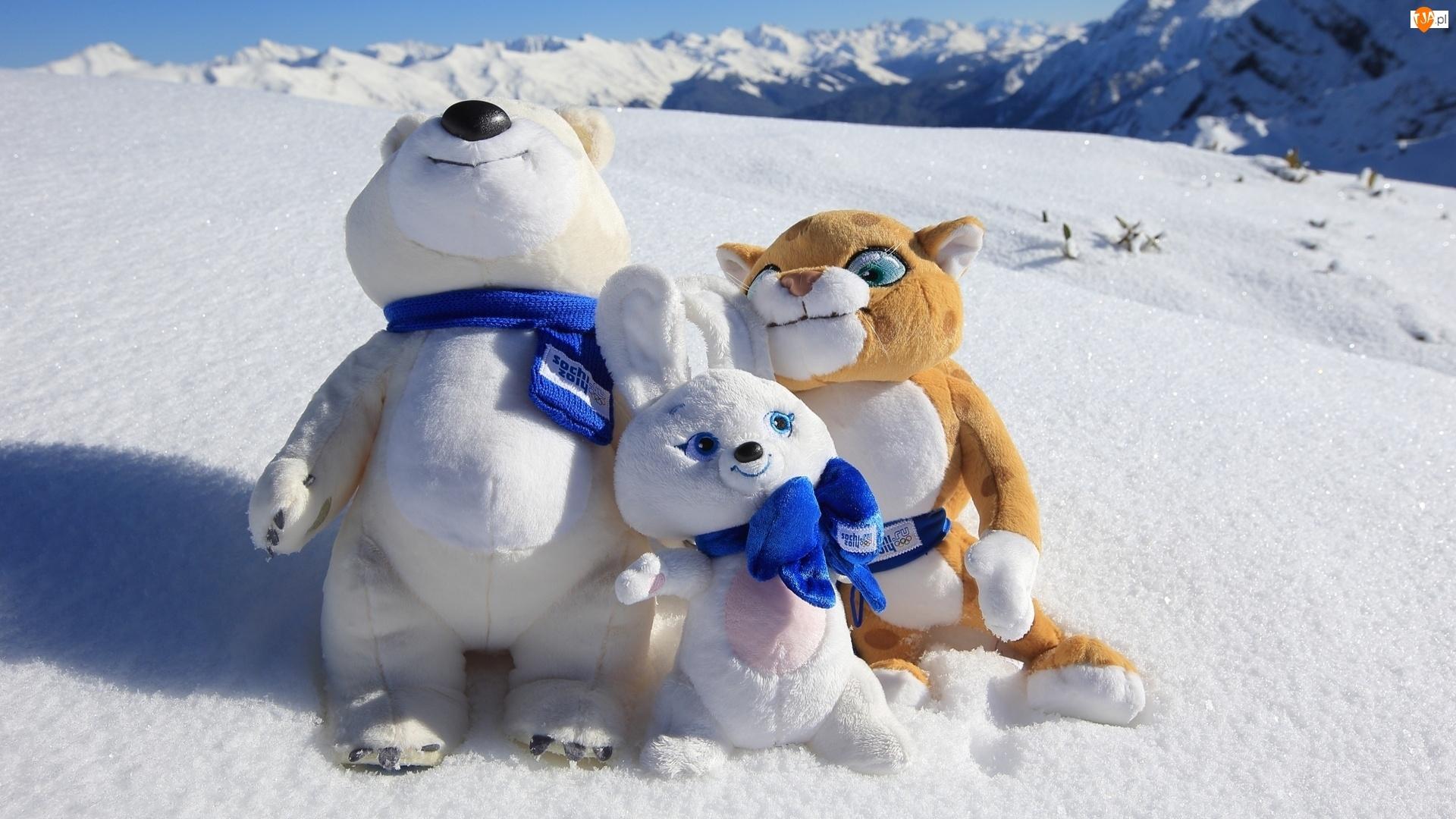 Śnieg, Pluszaki, Zabawki