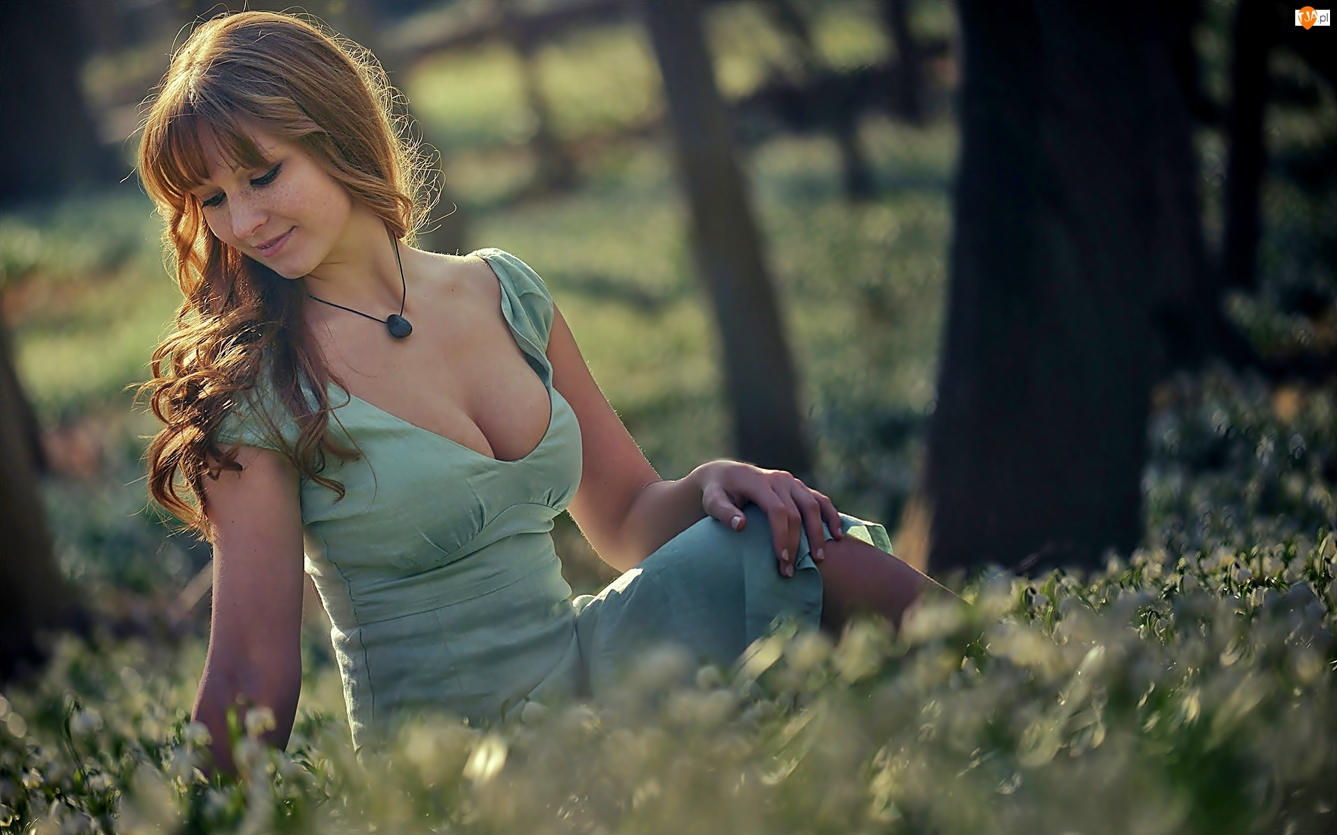 Las, Siedząca, Kobieta