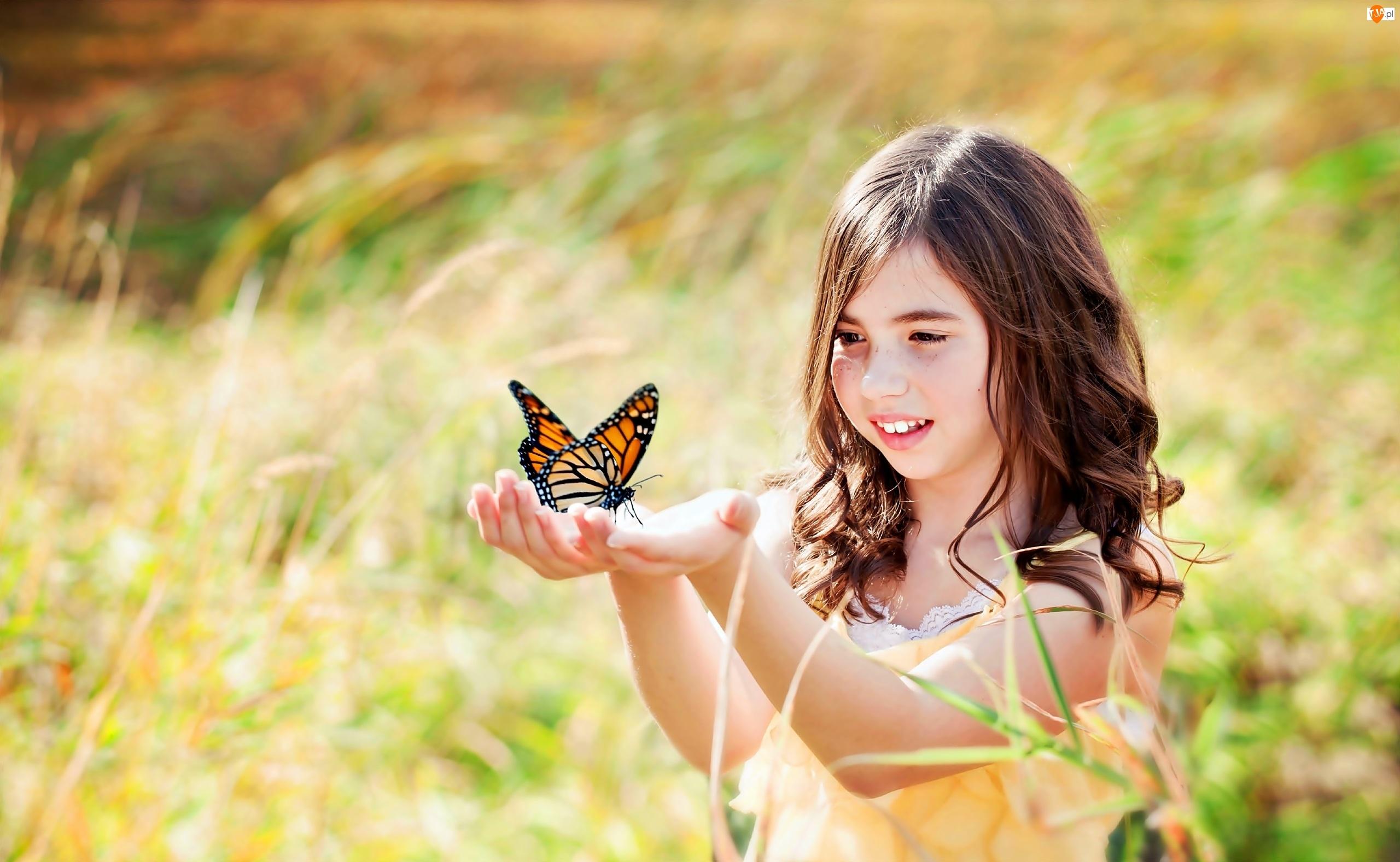 Lato, Łąka, Dziewczynka, Motyl