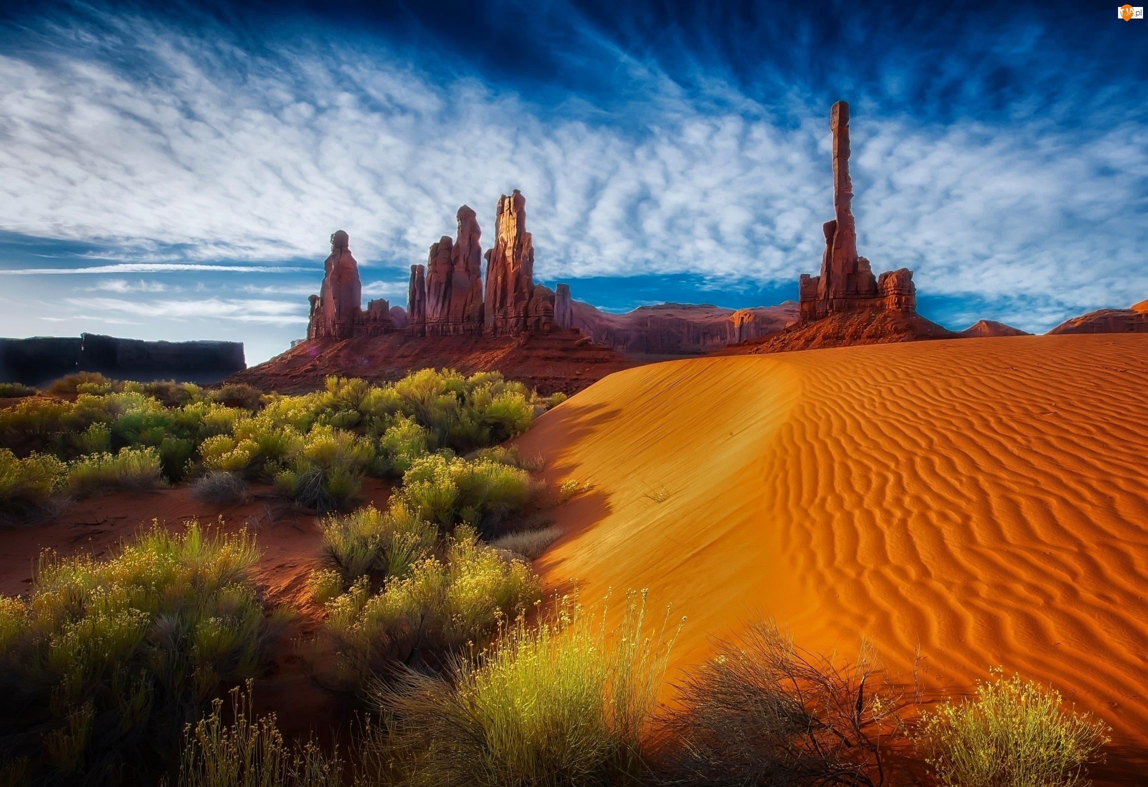 Krzewy, Arizona, Pustynia, USA, Skały, Niebo