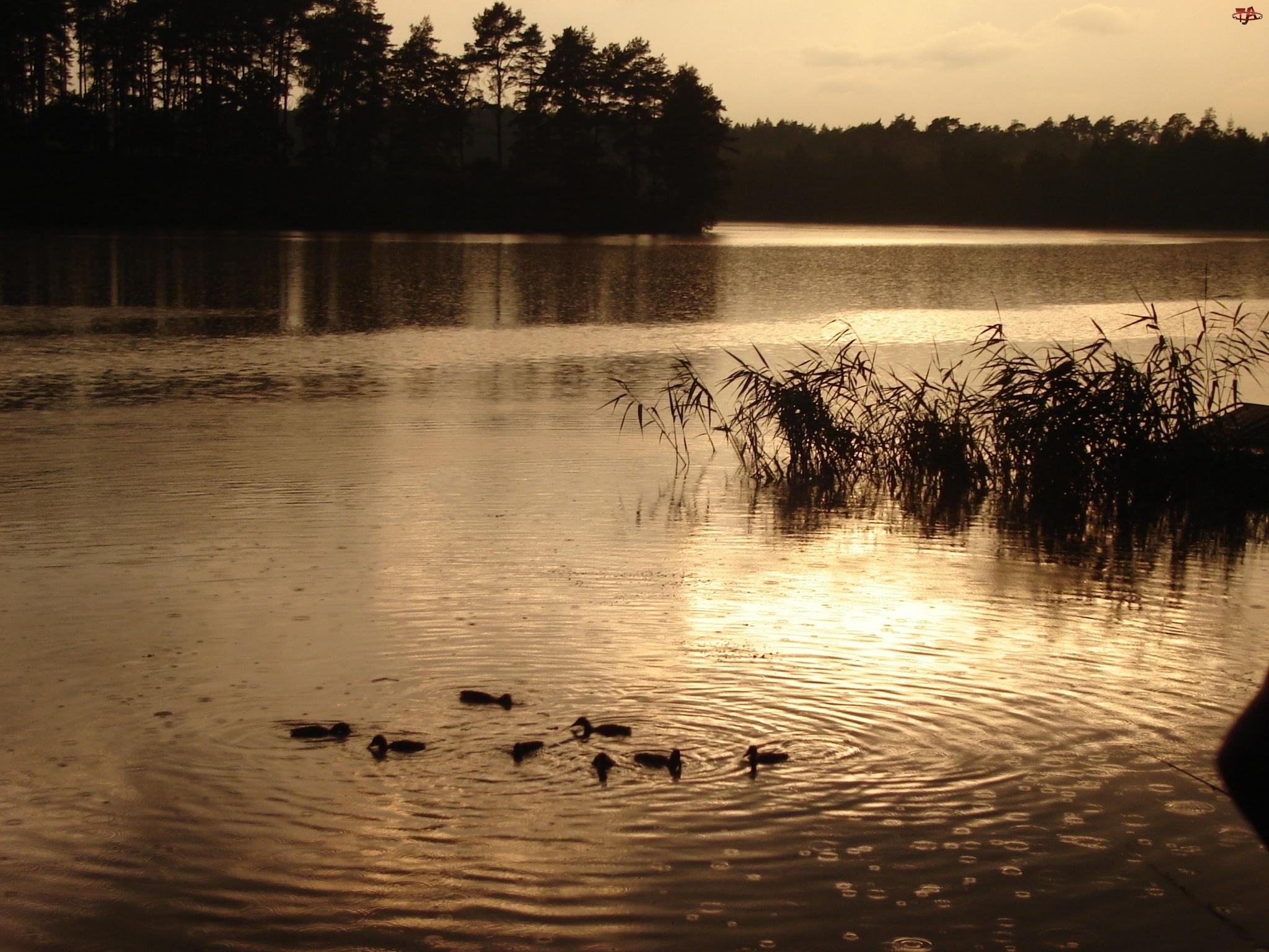 Kaczuszki, Rzeka, Zachód Słońca