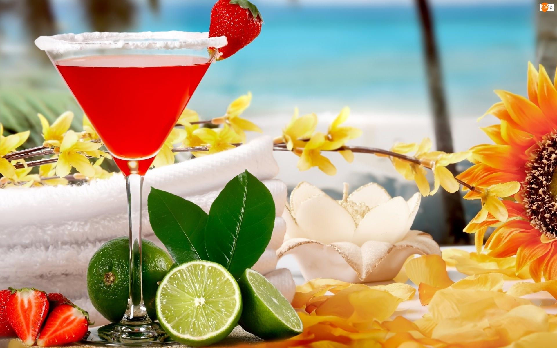 Owoce, Morze, Drink, Lato, Tropical Cocktail, Kwiaty