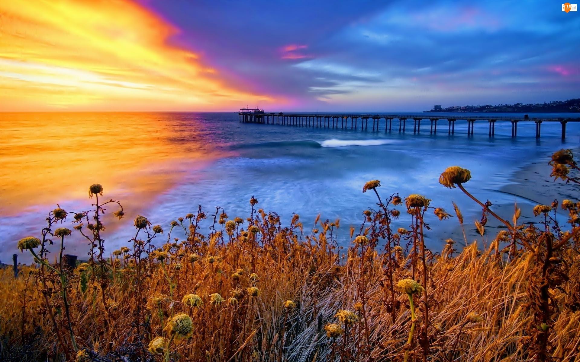Zachód Słońca, Molo, Morze