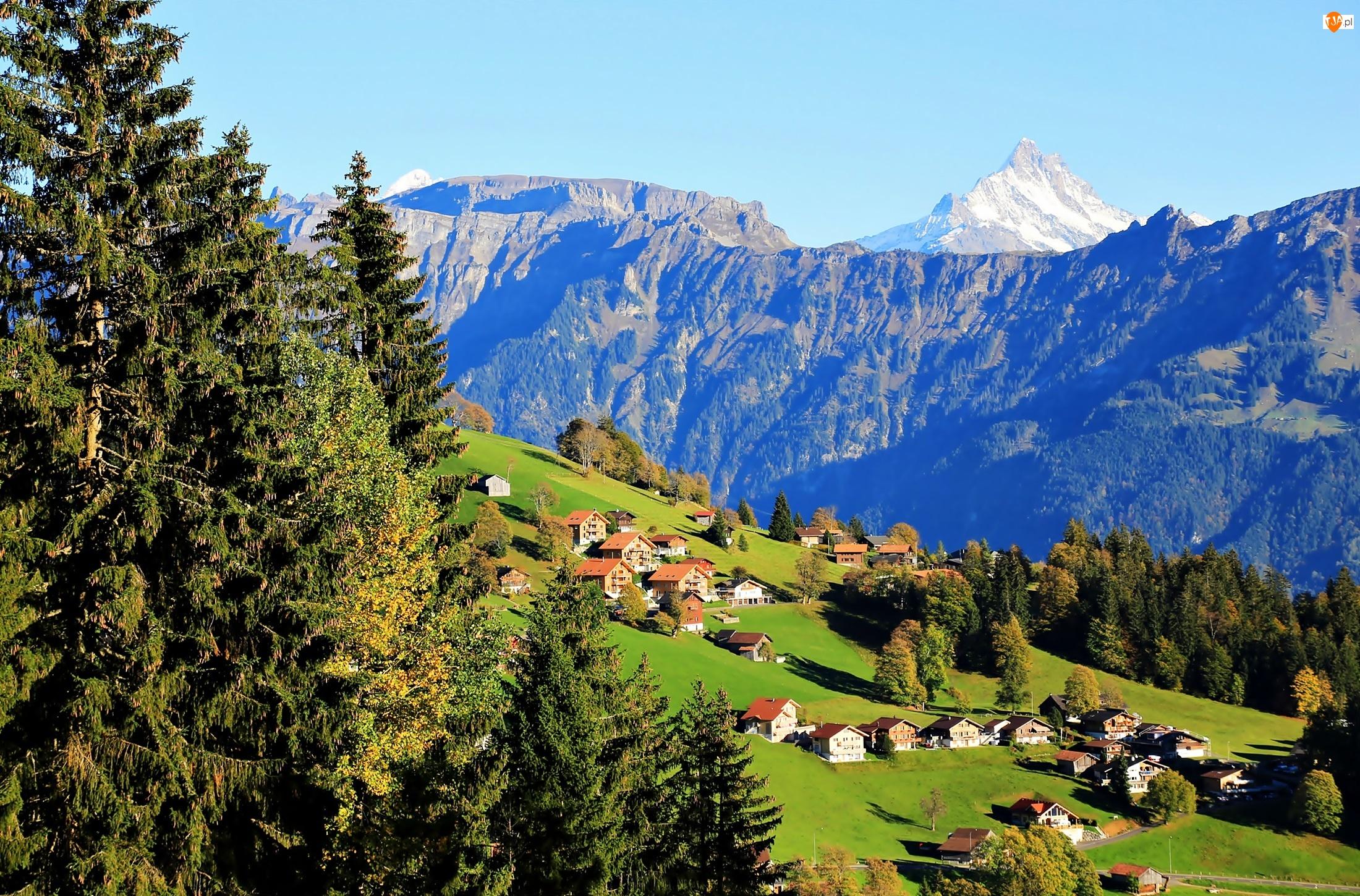 Wioska, Alpy, Łąki