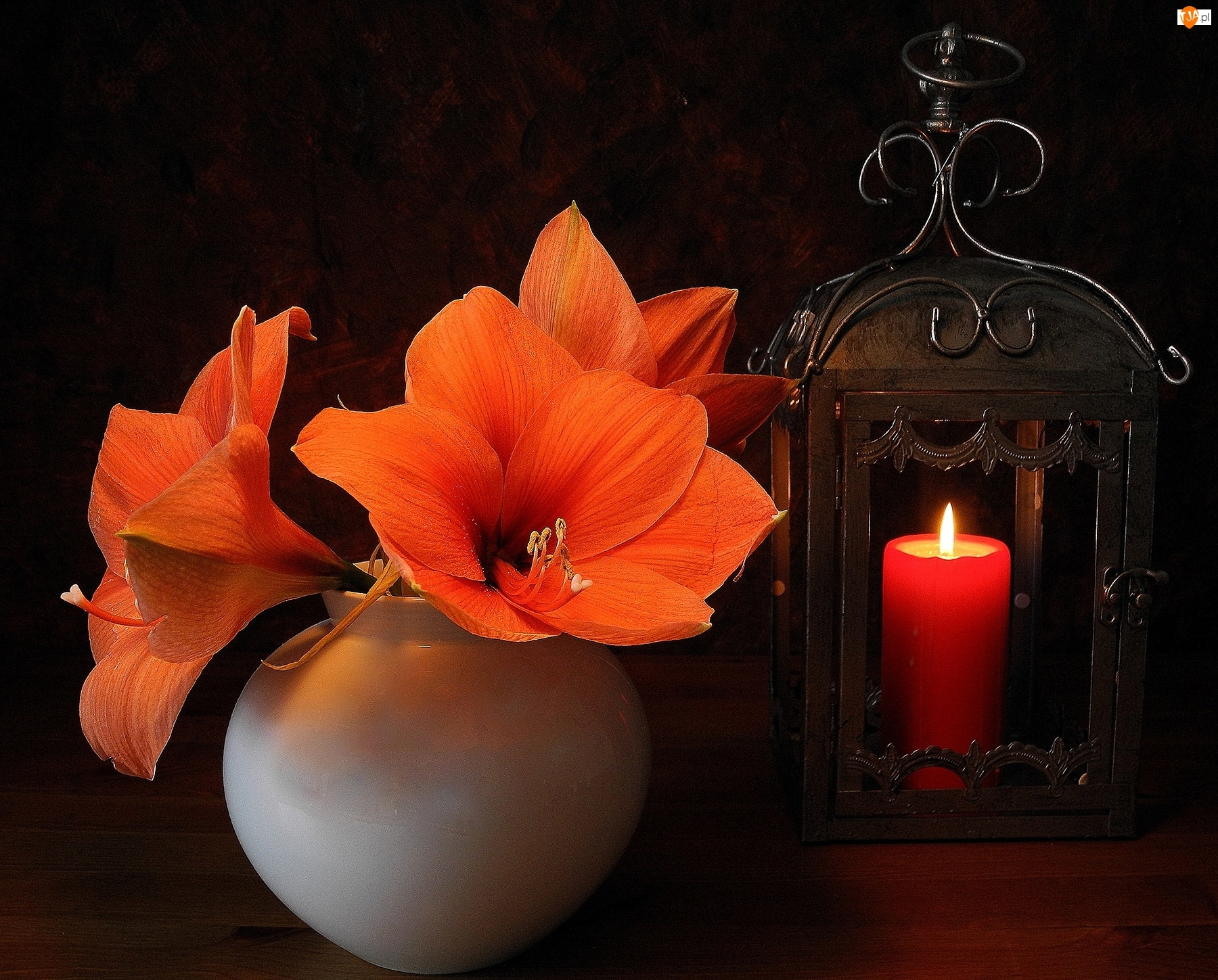 Lampion, Amarylis, Świeca, Ogień