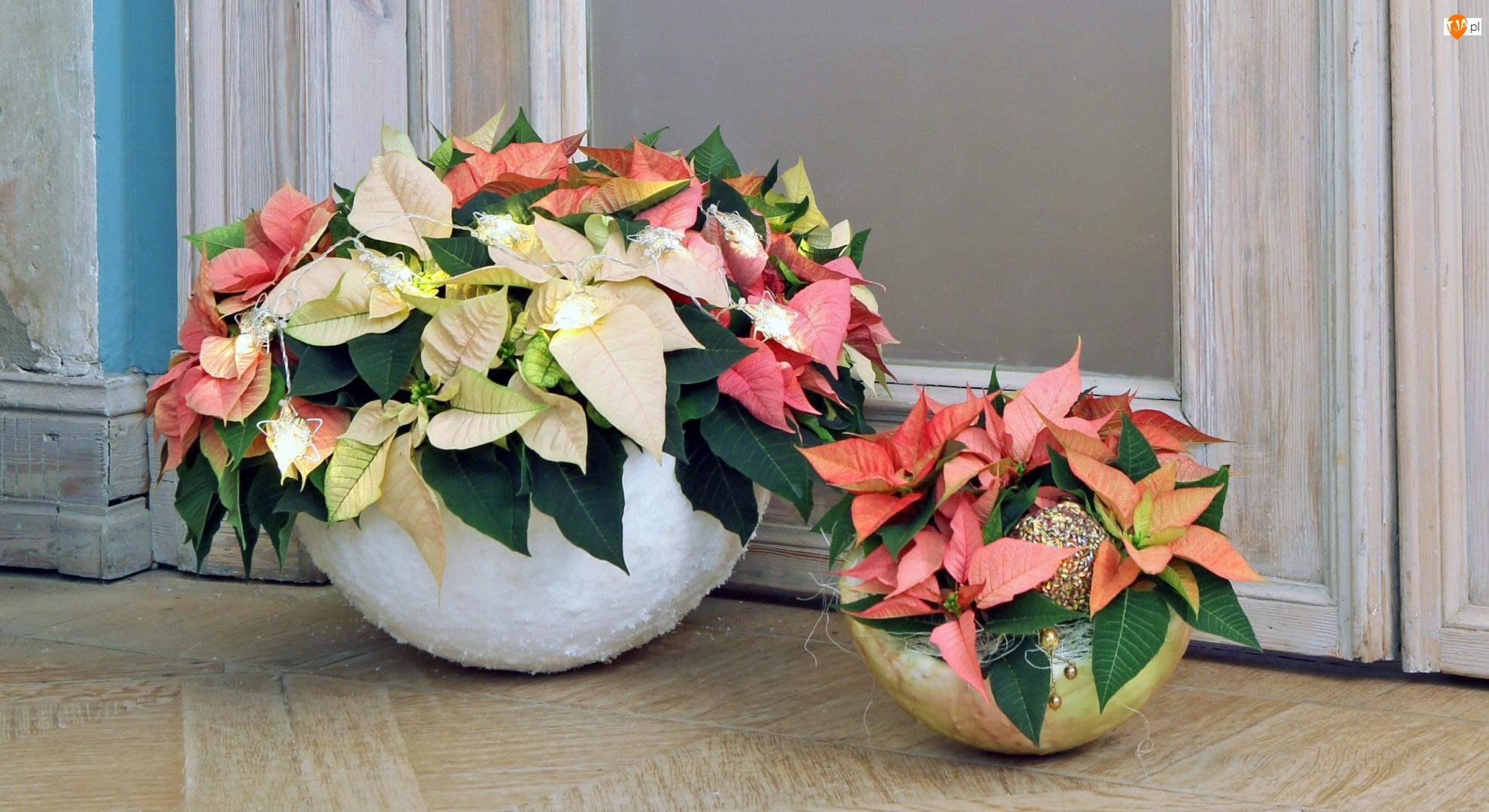 Kwiaty, Donice, Ornament
