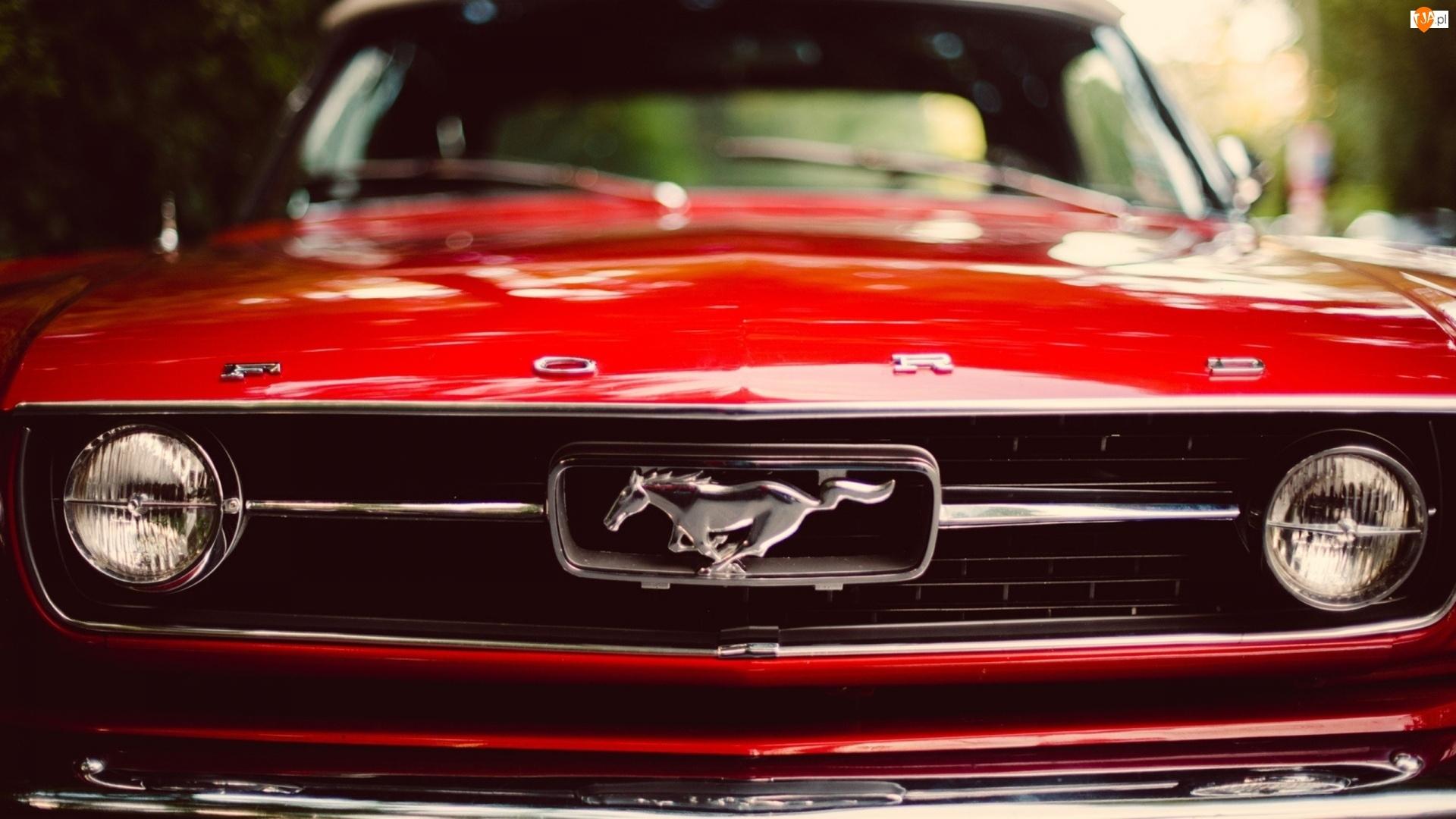 Czerwony, Rozmycie, Ford, Mustang