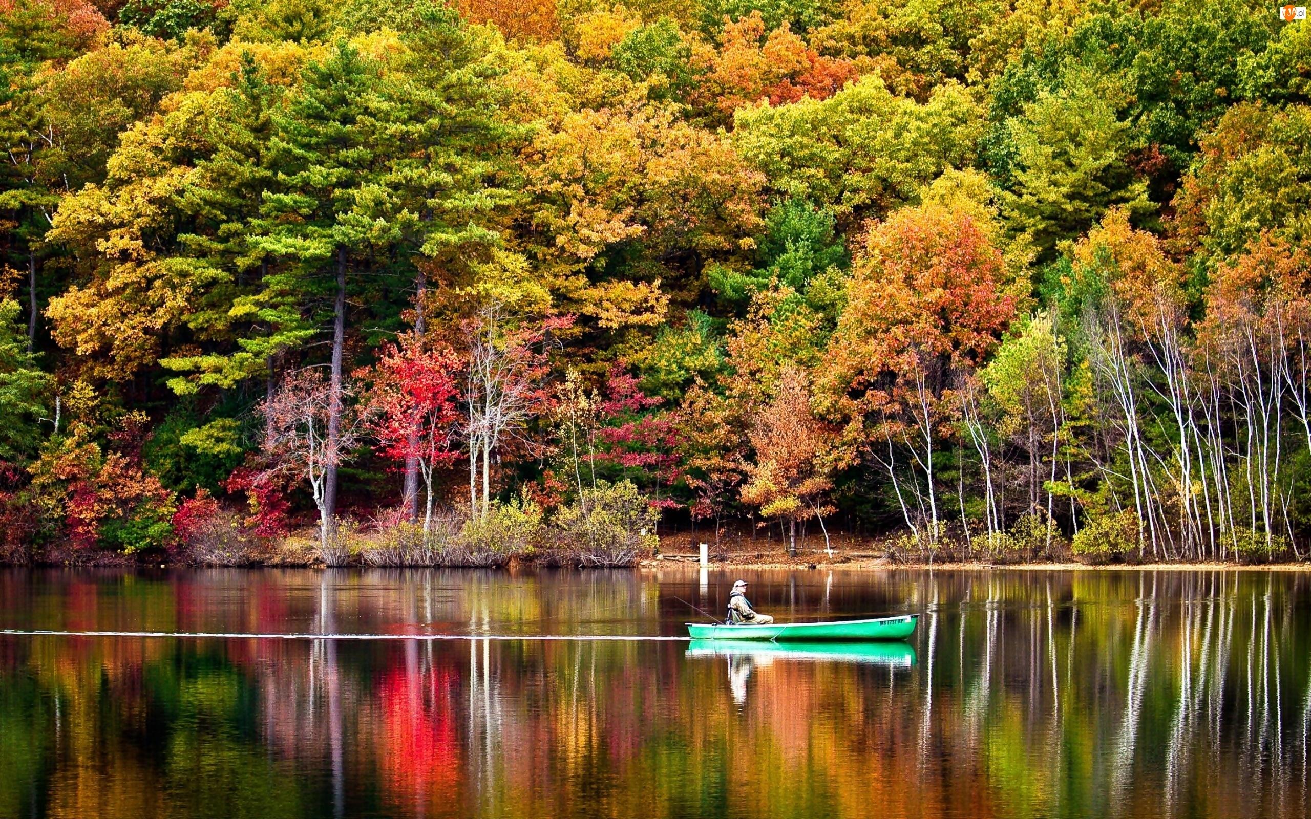 Drzewa, Las, Wędkarz, Jezioro, Jesień, Łódka, Kolorowe